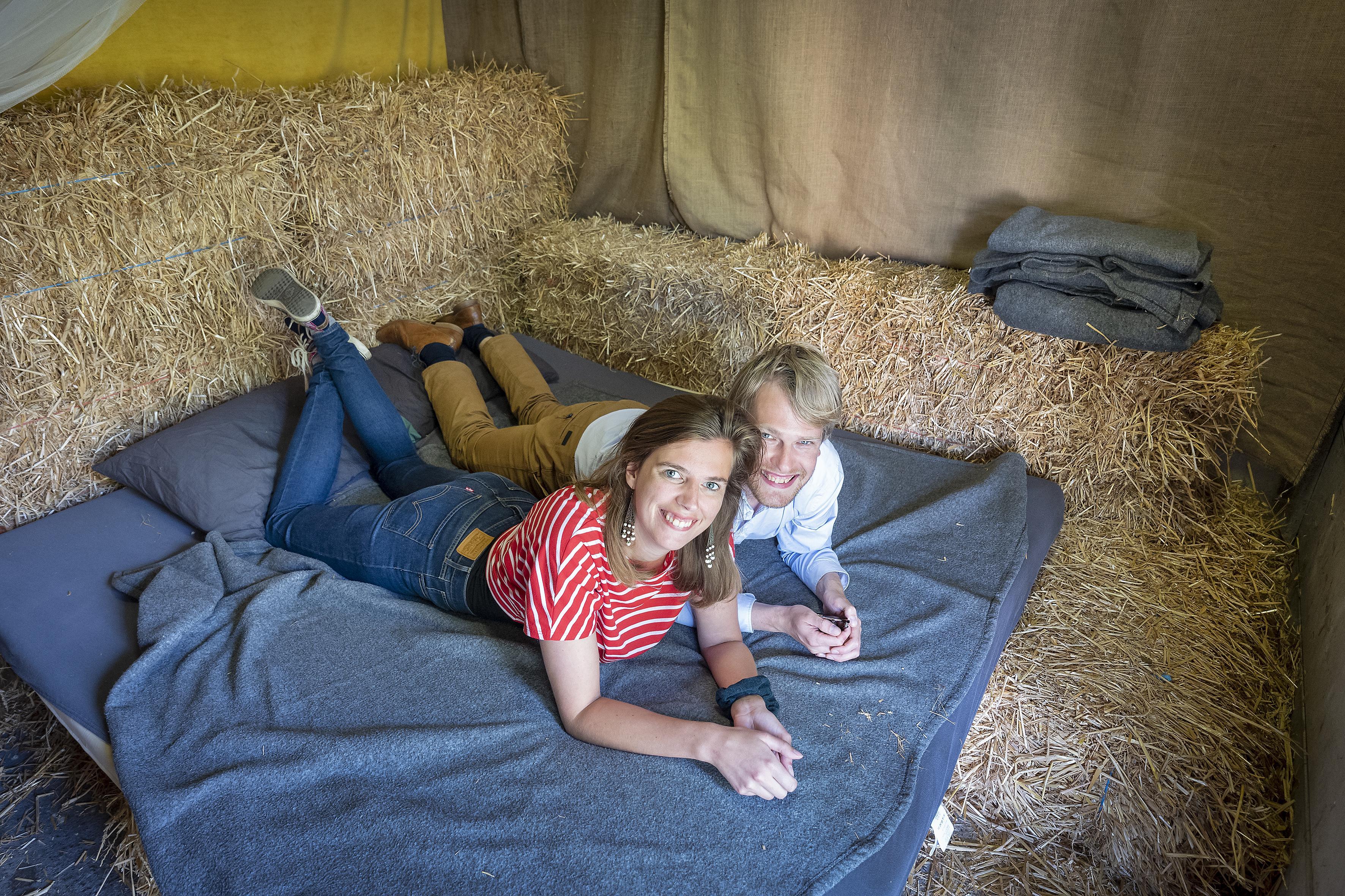 Terug naar het 'oergevoel' tussen de balen stro: logeren in een paardenstal in Zwaanshoek