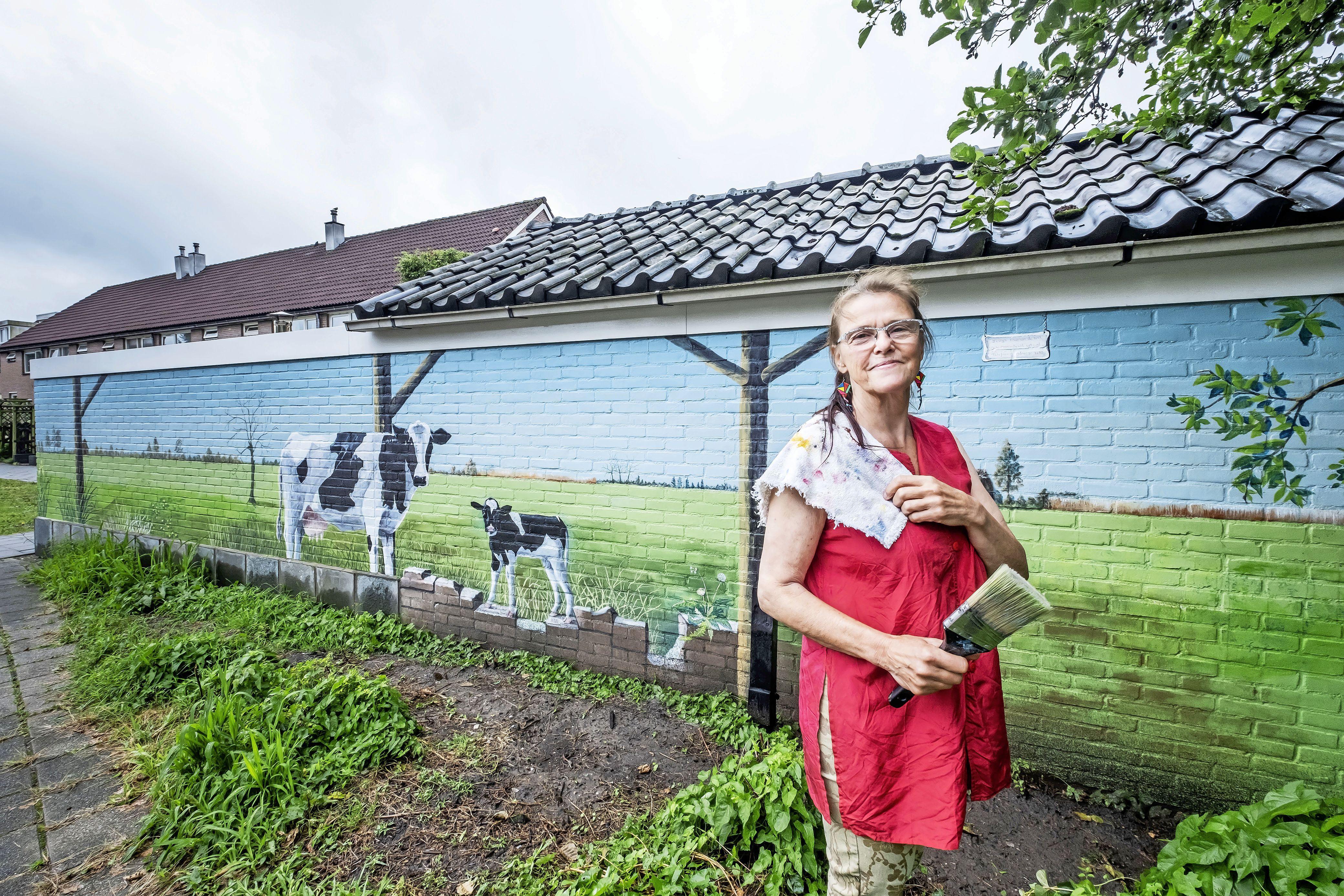 'Er werd ook naar me getoeterd en dan staken de mensen hun duim omhoog'. Met koeien beschilderde muur trekt veel bekijks. 'Ik hou van grote formaten'