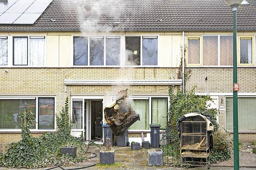 Veertigjarige papegaai Pino gered uit brandend huis in Eemnes; Slaapkamer volledig verwoest, woning onbewoonbaar