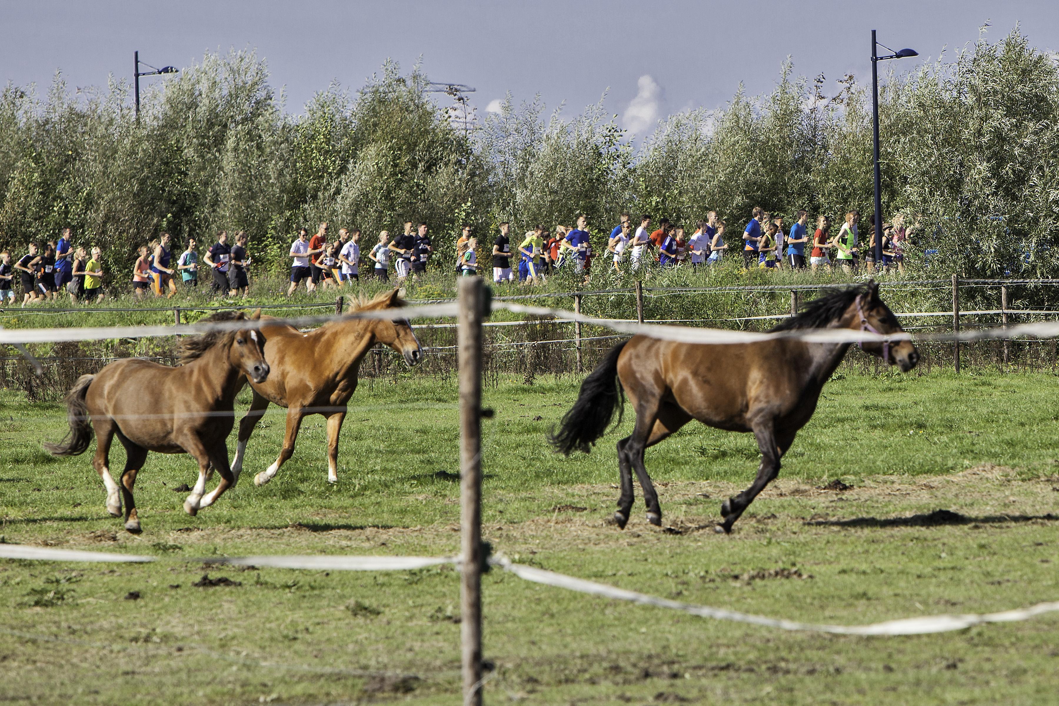 Twee parcoursrecords bij Haarlemmermeer Run