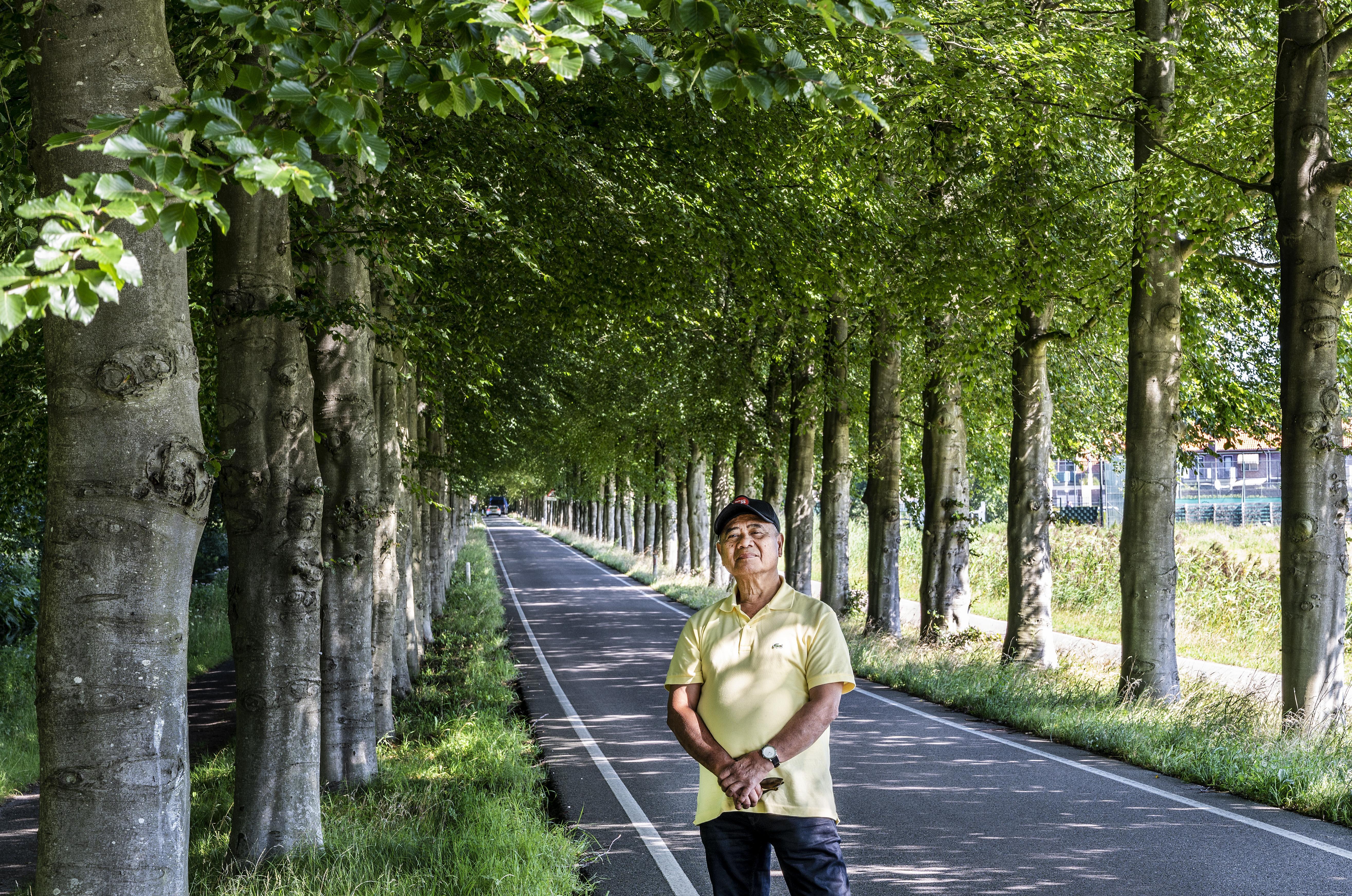 John Todirijo trots op het tunneleffect Elswoutslaan: 'Nu rijd je in een prachtige, homogene laan'