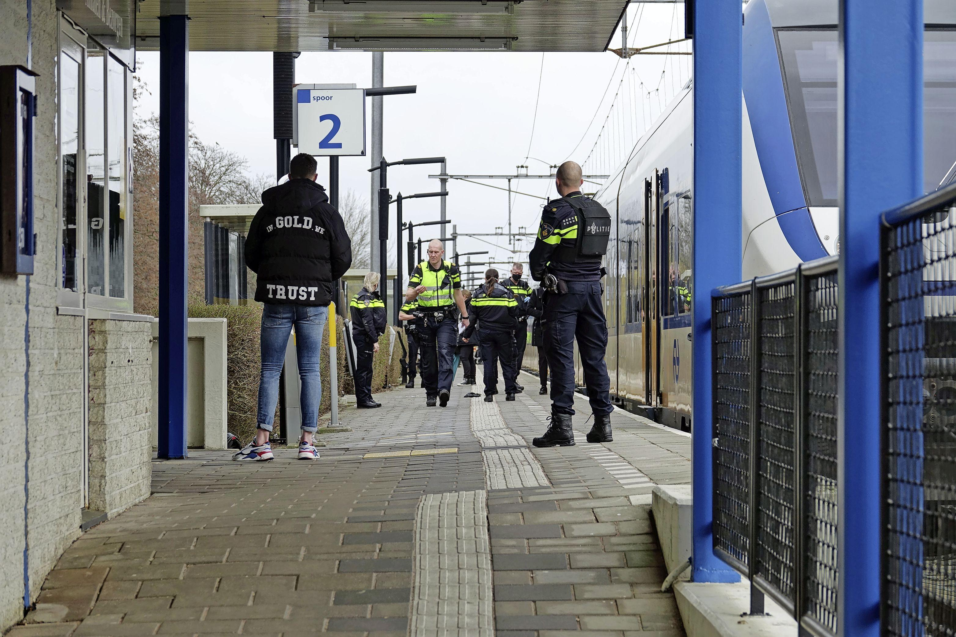 Zeven aanhoudingen in Koog aan de Zaan na conflict met vuurwapen in trein [video]