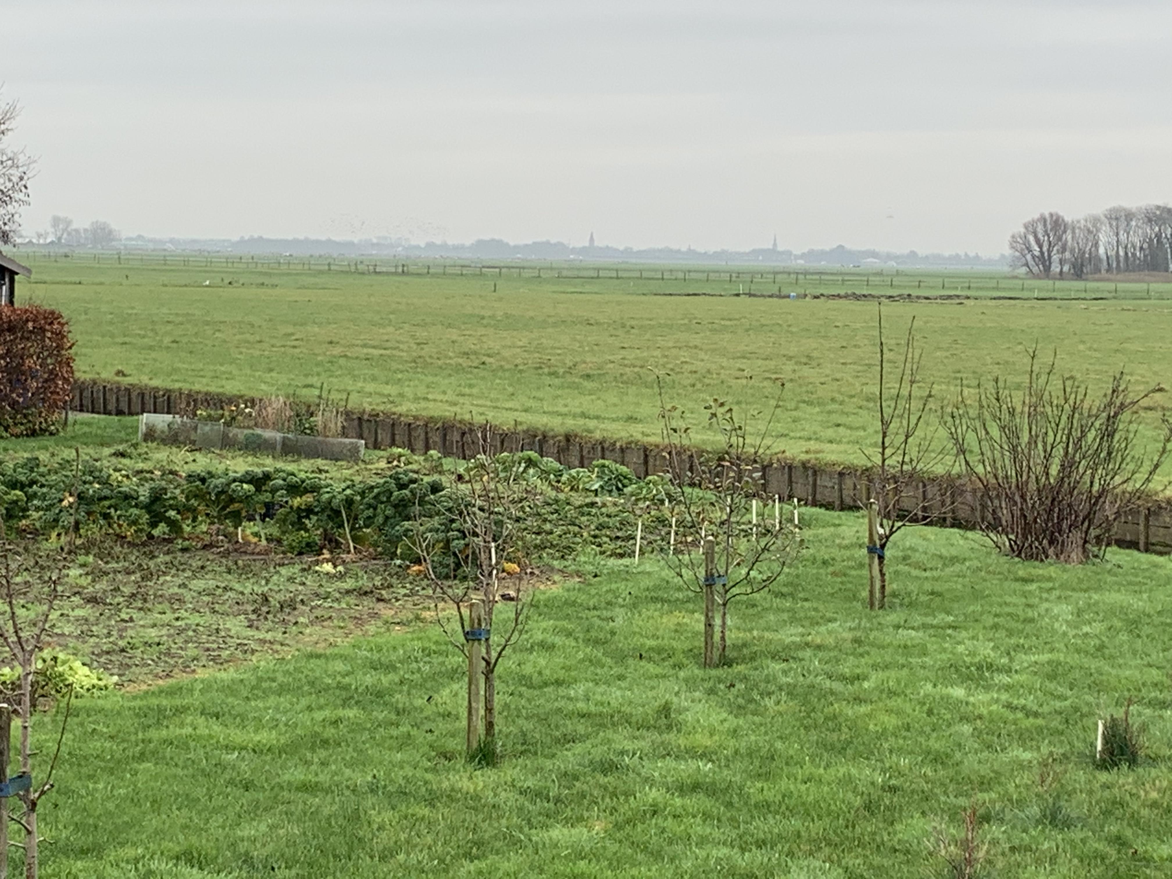 Gemeenteraad wil duizend huizen buiten Heemskerk bouwen. 'Een schaalsprong naar het oosten'