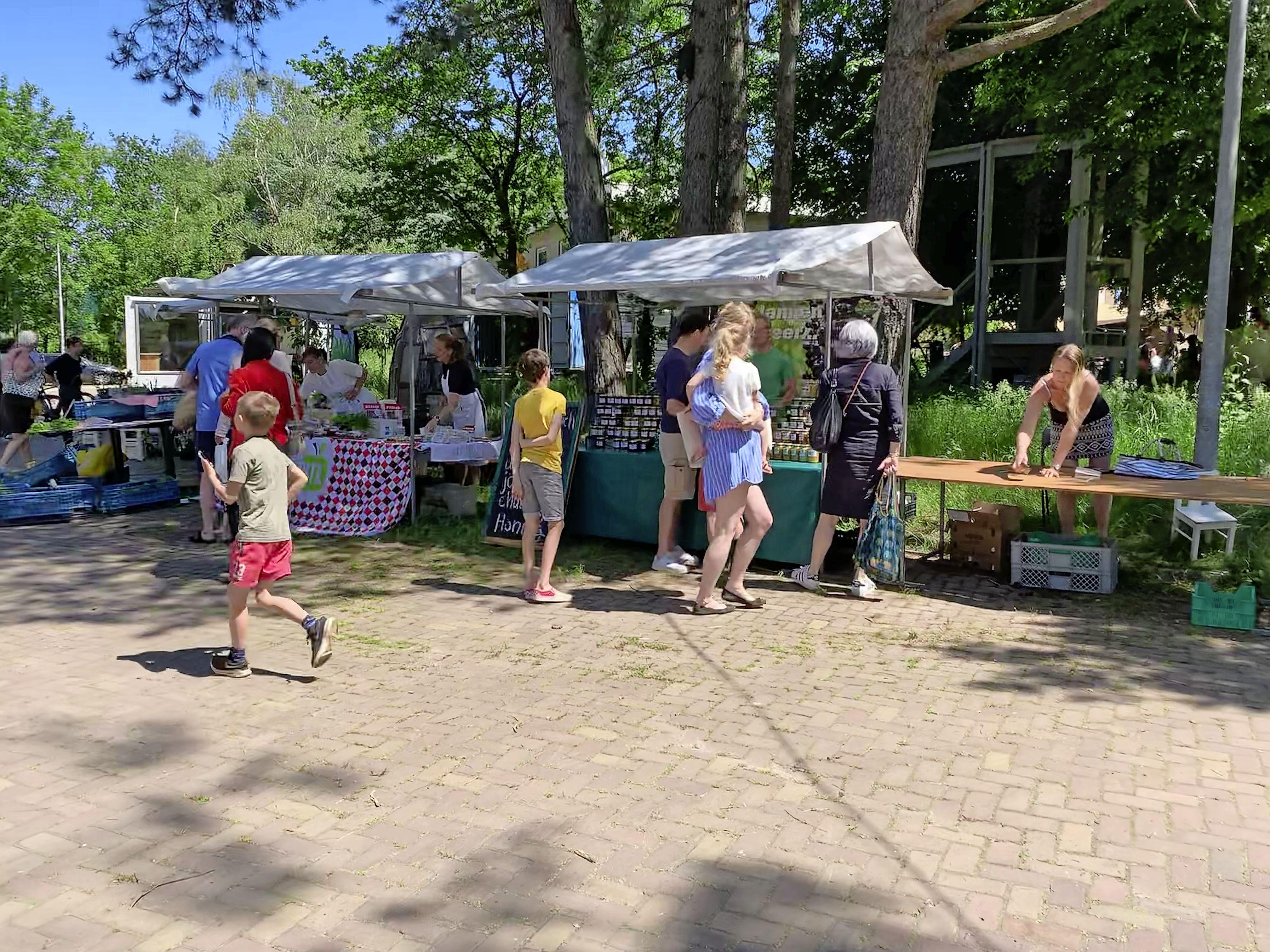 'Vandaag zijn we wakker gekust'; allereerste biologische markt op De Groene Afslag in Laren druk bezocht; 'Na corona is alles een feestje'