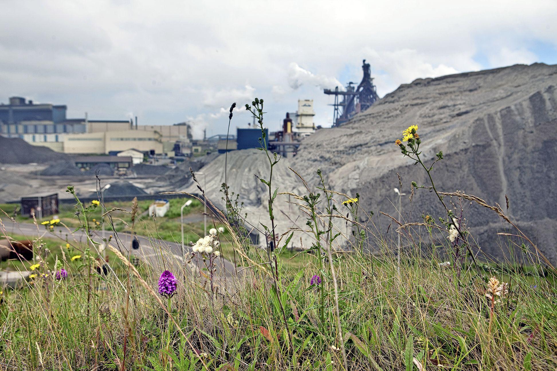 Tata Steel bezoeken zonder een stap te verzetten, er zijn deze maand weer online bedrijfsbezoeken