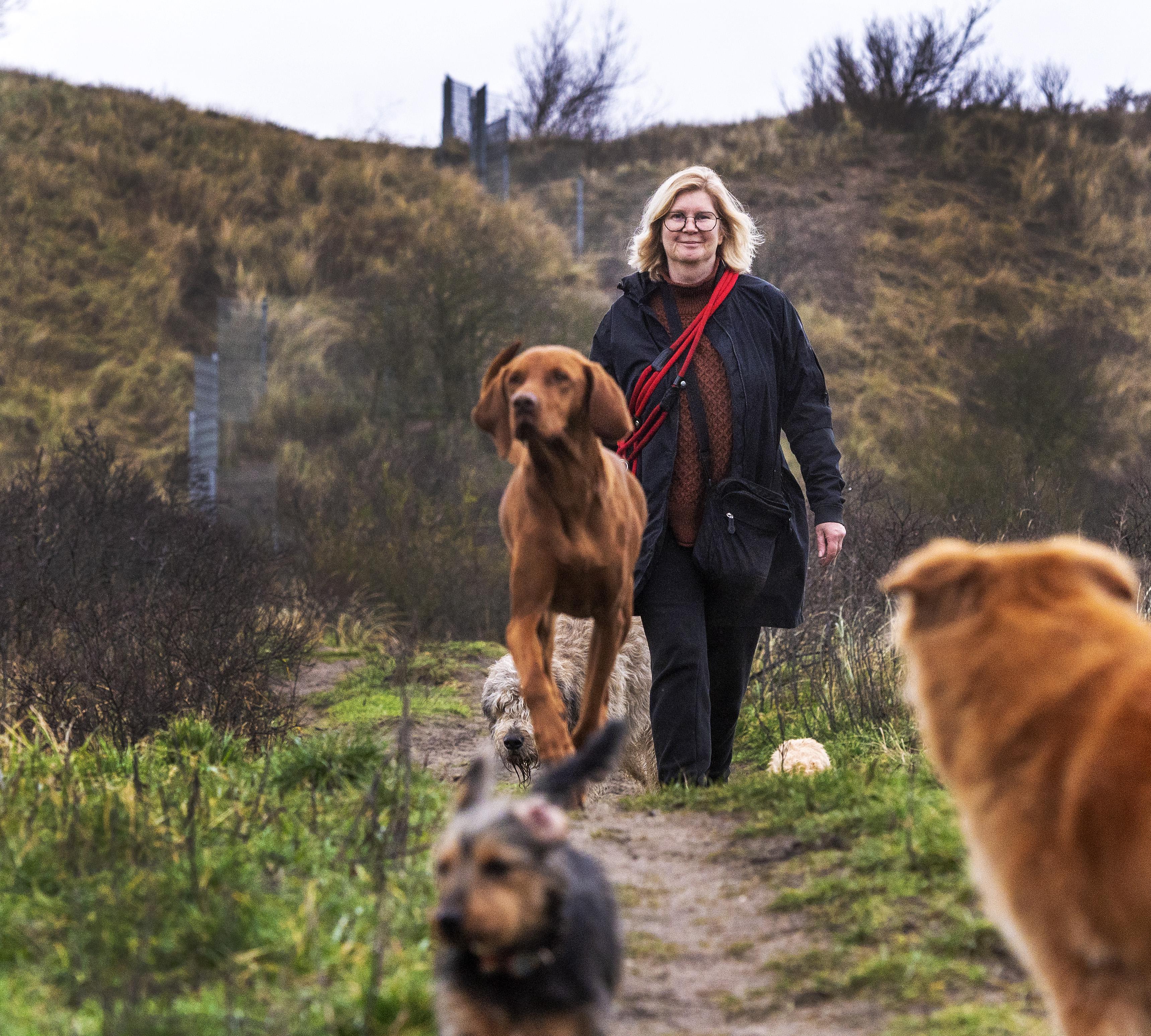 Zorgen bij uitlaatservice Snoets over aanpak hondenoverlast 'Kan ik straks in Zandvoort mijn beroep nog uitoefenen?'