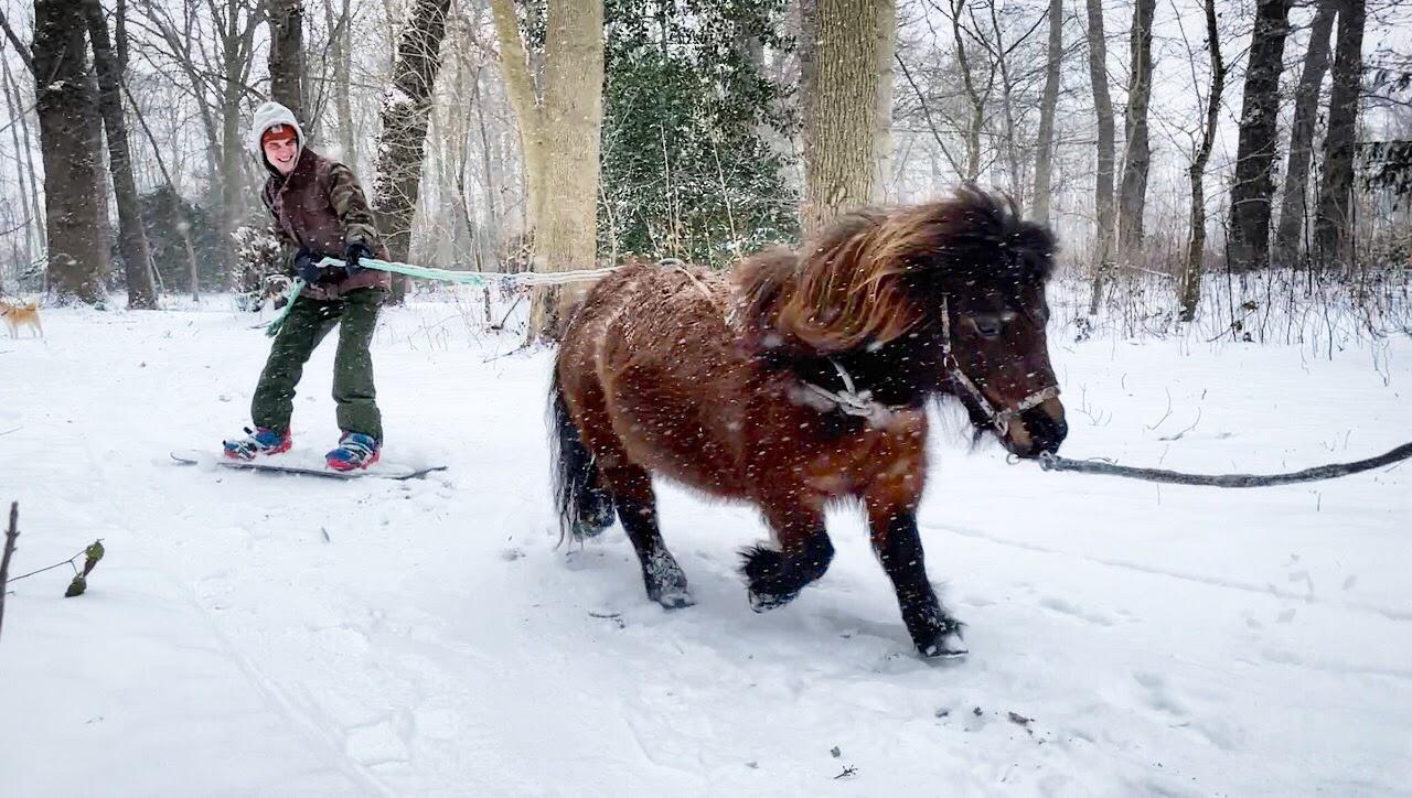 Geen bergen, maar wel een snowboard: 'freeriden' door de sneeuw kan ook achter een paard