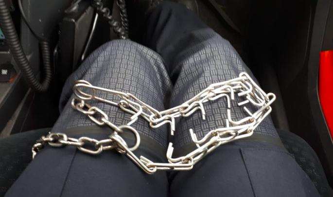 Dierenpolitie neemt metalen prikhalsband in beslag in Velsen