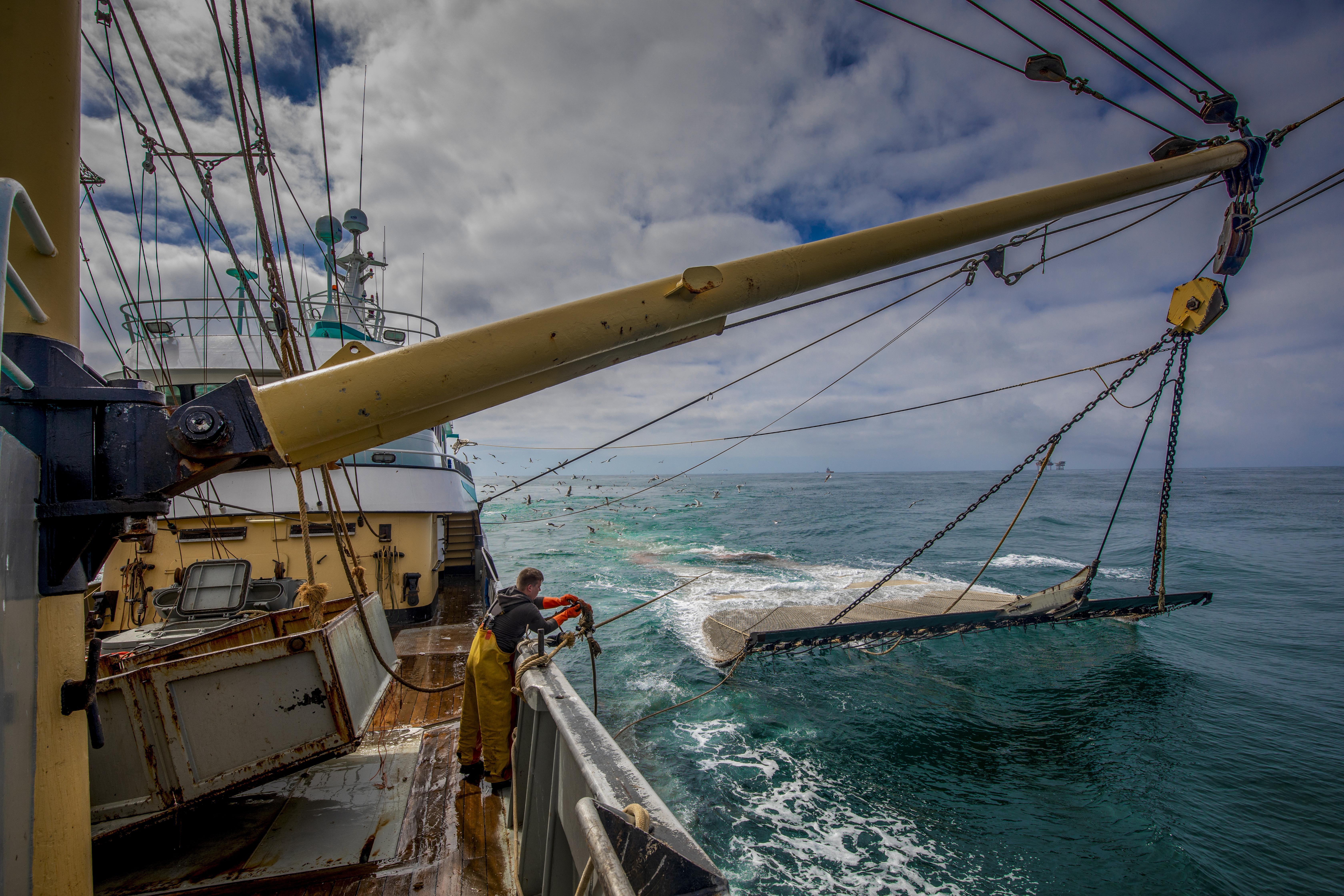 Iedereen zit aan tafel bij de conferentie over Europese zeeën in Den Helder, behalve de visserij | opinie