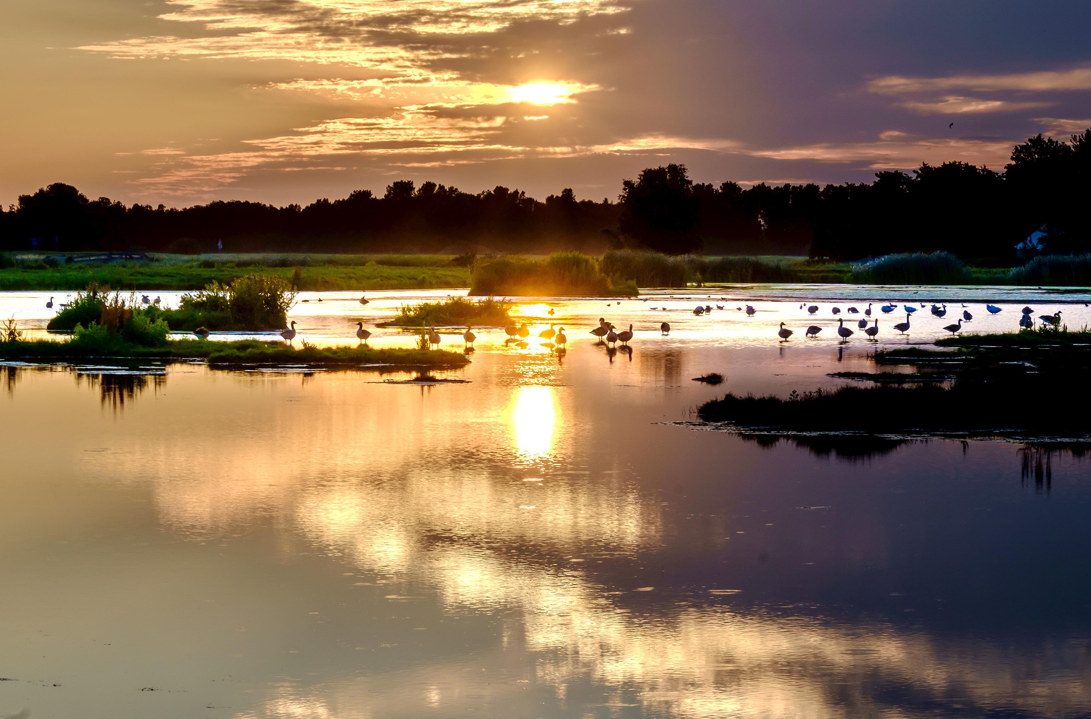 Tokkelbaan en horeca noodzakelijk voor recreatiegebied Geestmerambacht. 'Voor niets gaat de zon op'