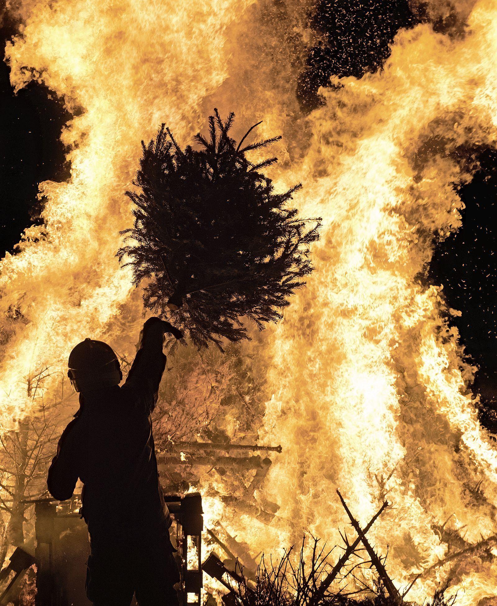 Een verbod op kerstboomverbrandingen in de IJmond, zou dat werken? | Stem op de IJmondstelling