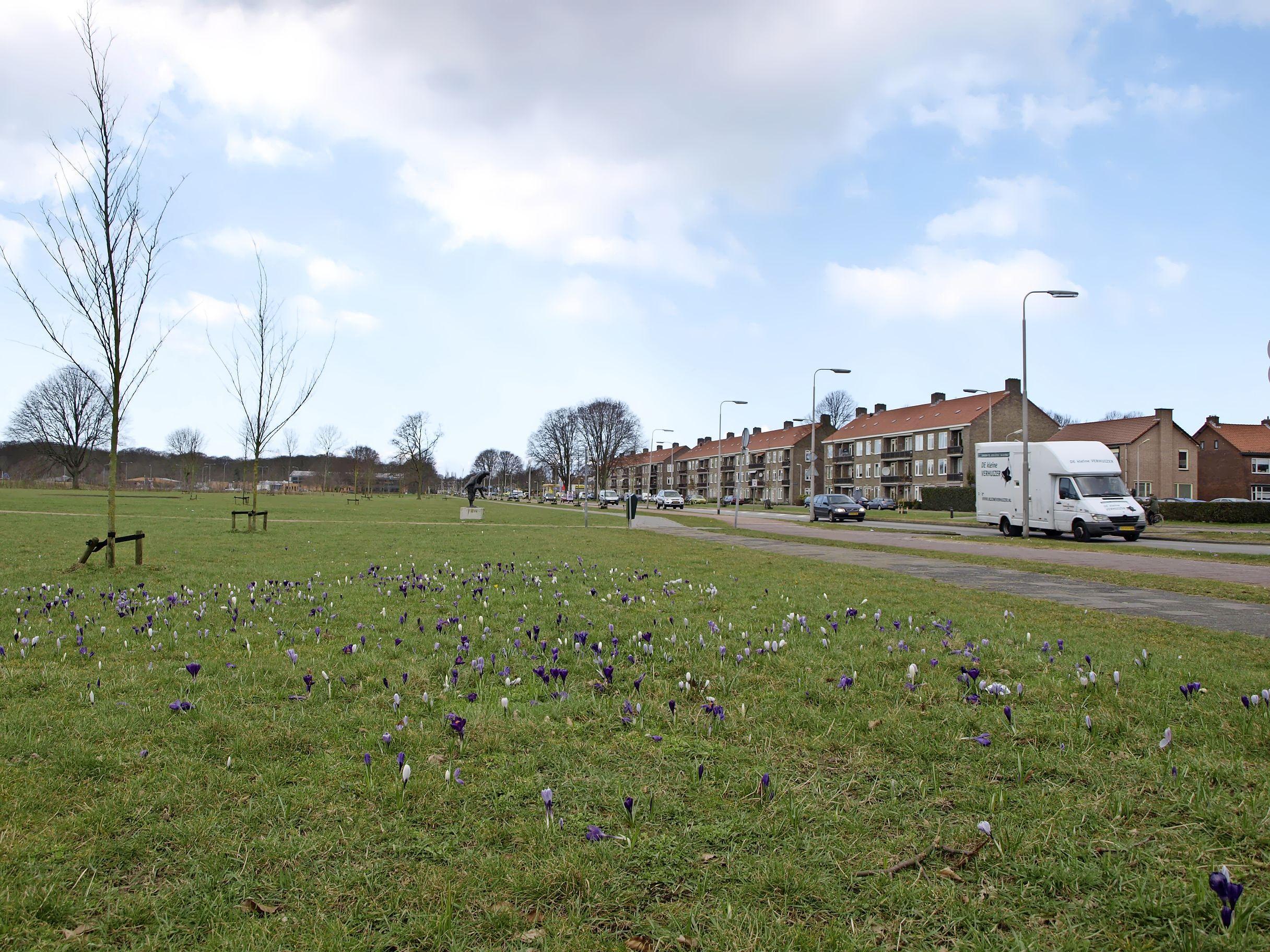 D66: GroenLinks verloochent zichzelf met optie op woningbouw langs Heerenduinweg in IJmuiden