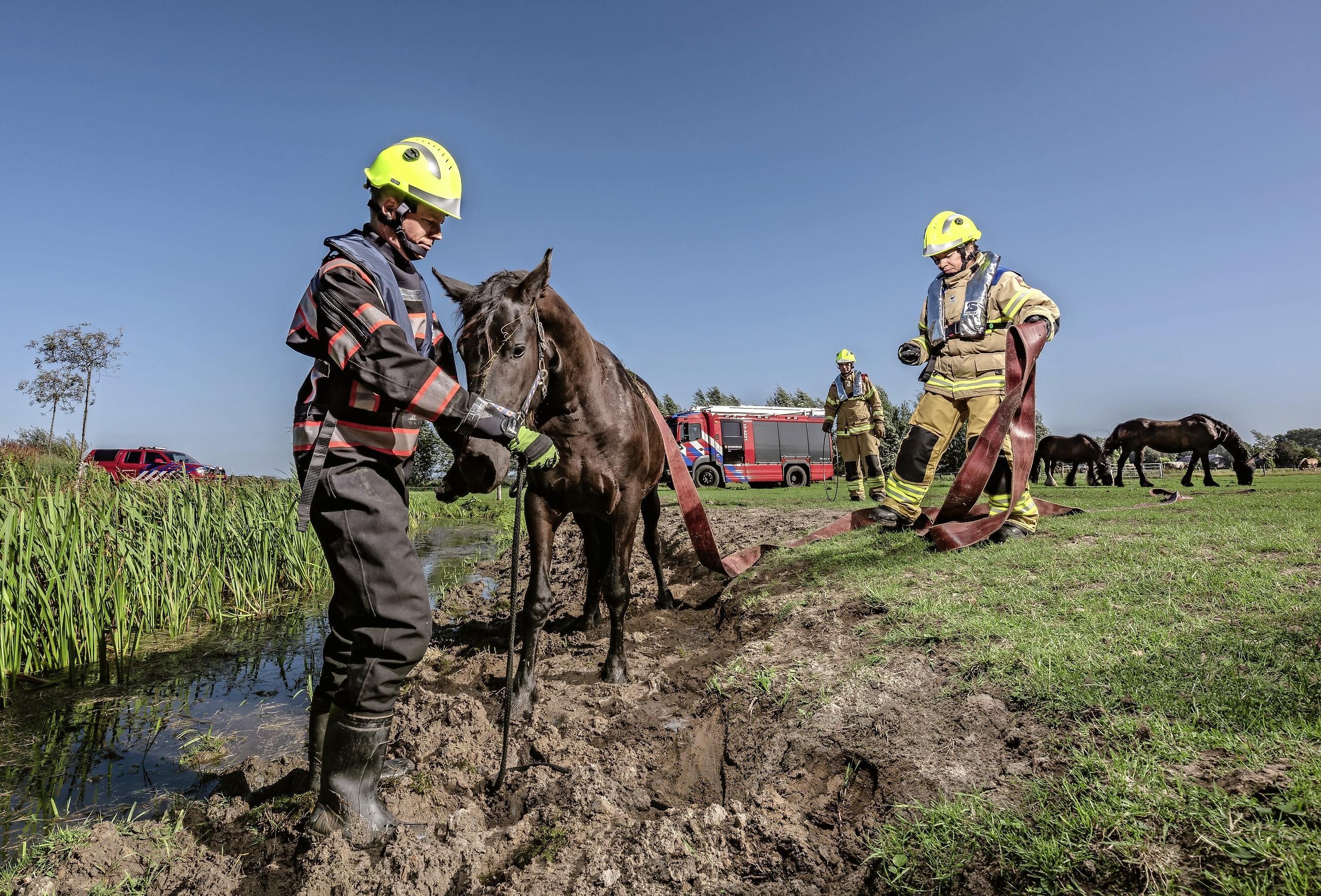 55 kandidaten melden zich aan als brandweerassistent: posten Limmen, Groet, Schoorl en Bergen lijken voorlopig uit de brand