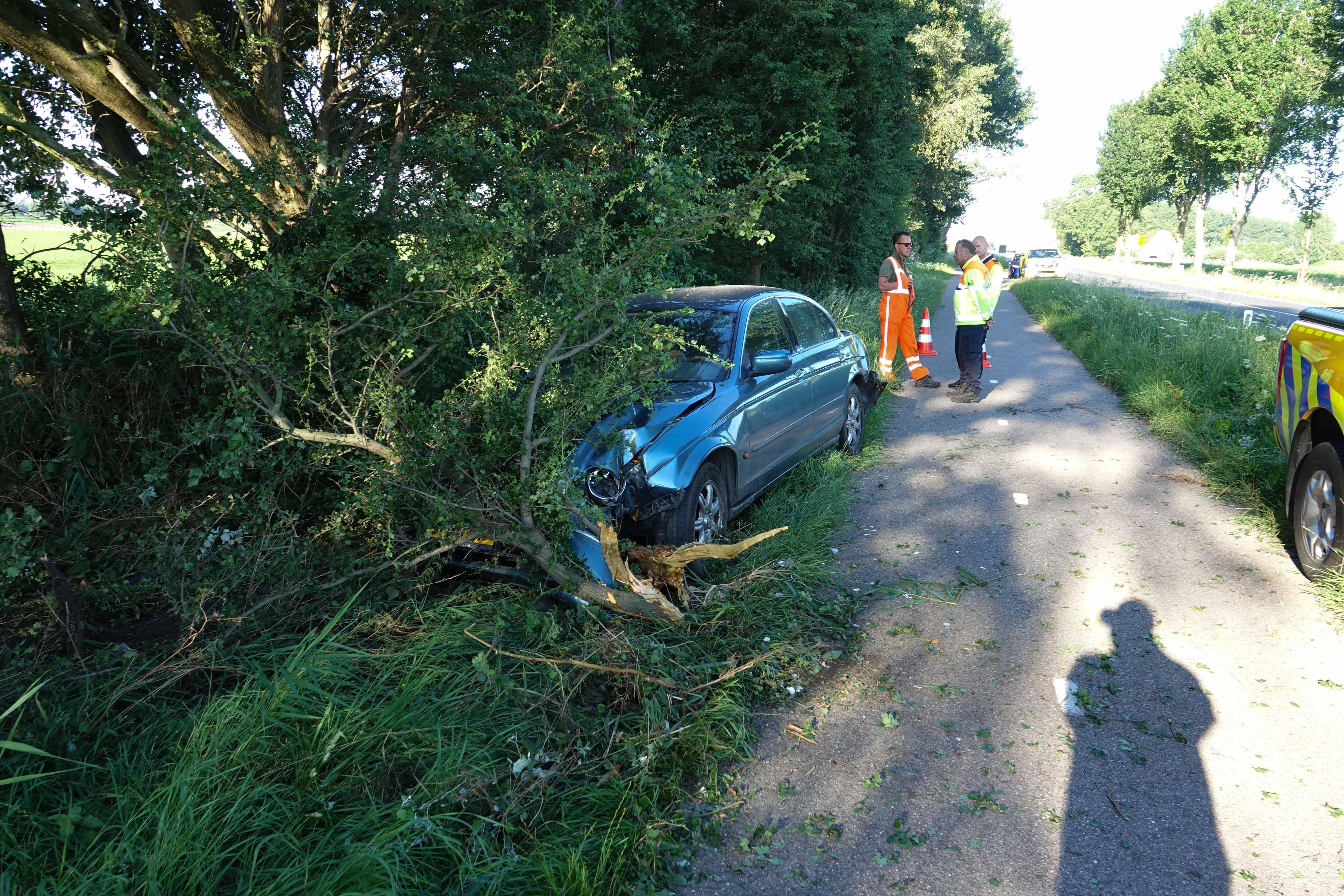 Auto raakt van de weg en belandt in bosjes in Hoogwoud, bestuurder vlucht