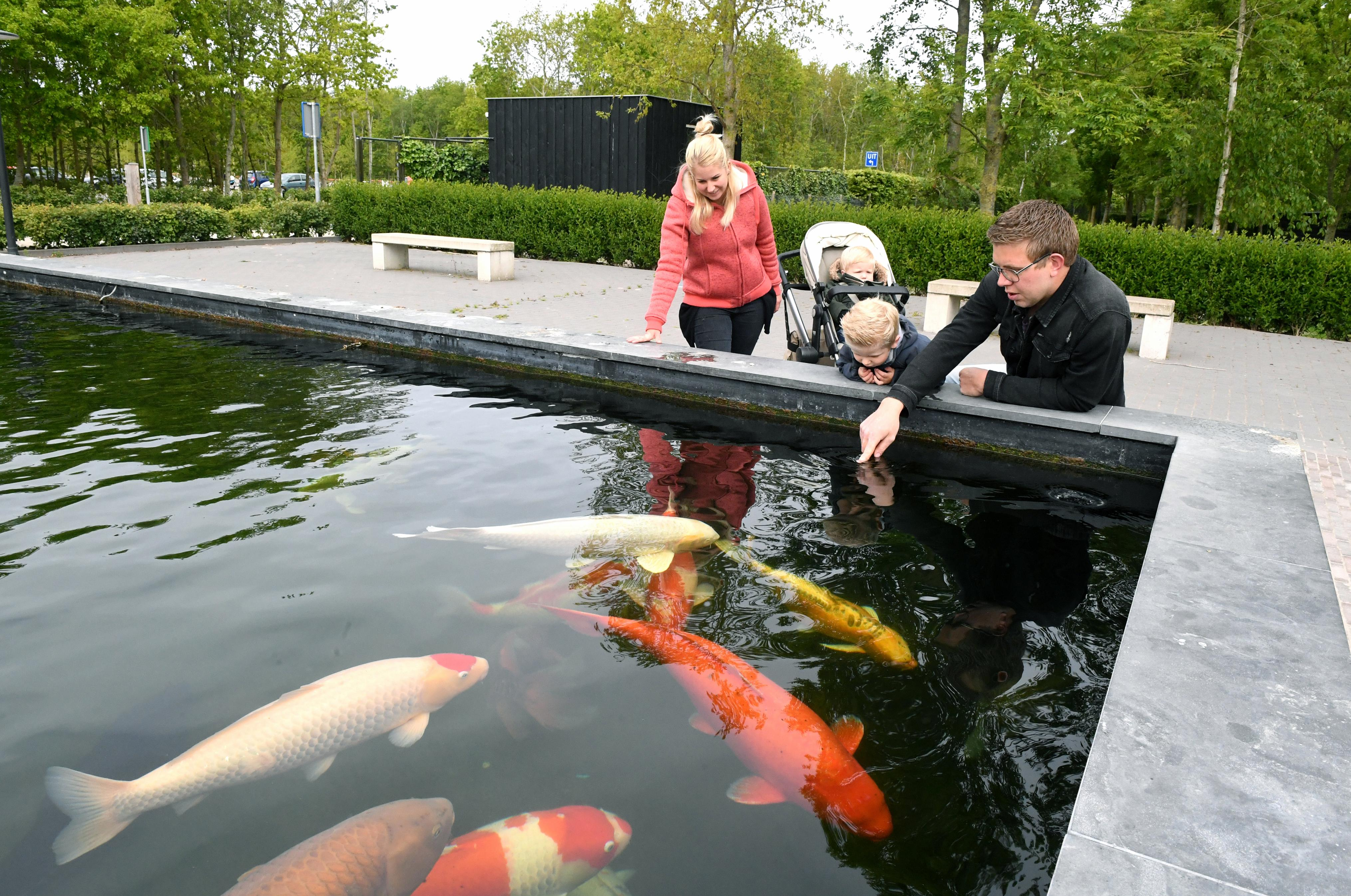 Kinderen uit Julianadorp kunnen gratis mee naar Dierenpark Hoenderdaell en het Zuiderzeemuseum
