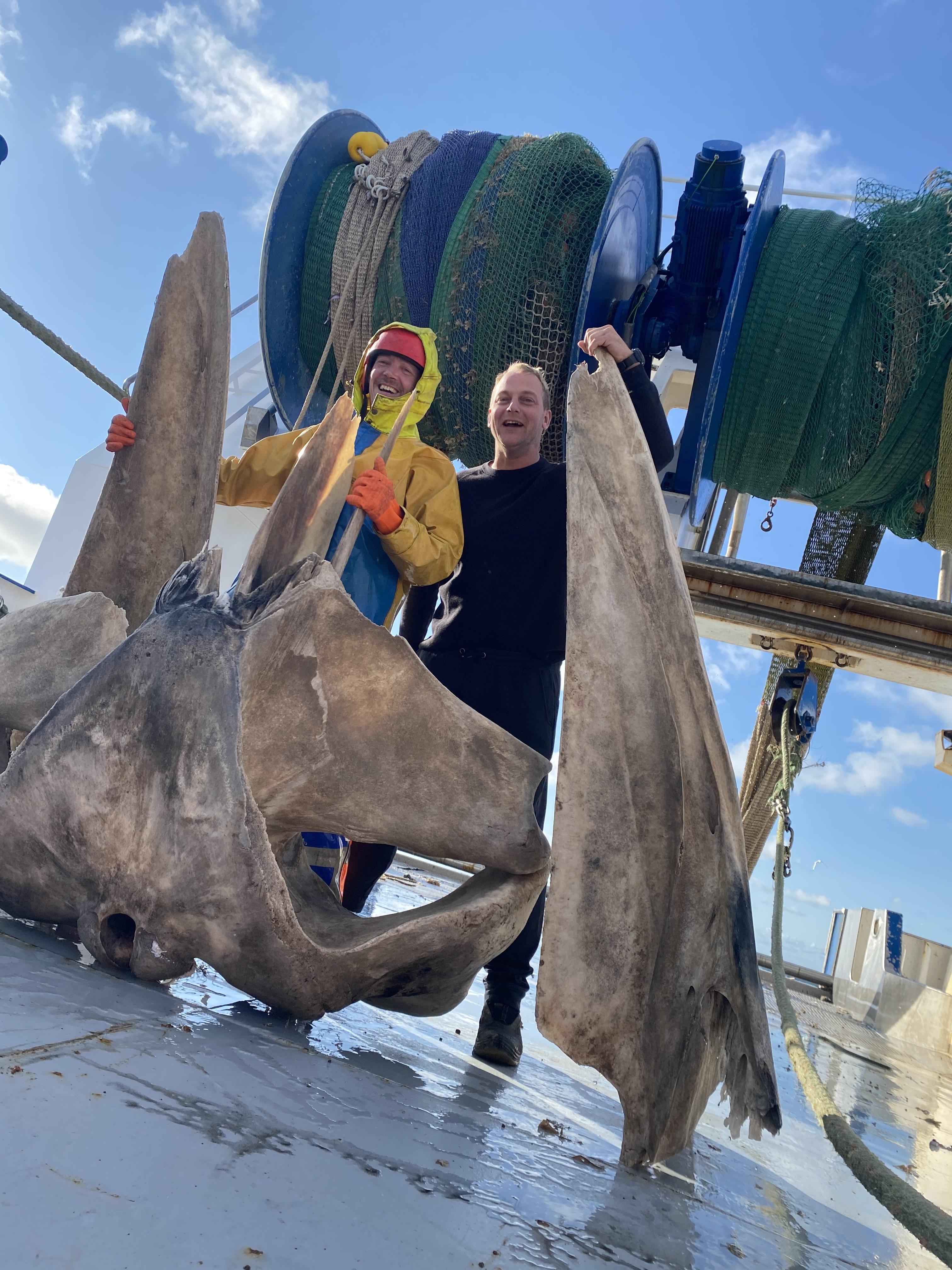 Schedel van door de Katwijkse visser Klaas van Duijn gevangen vinvis gaat naar Naturalis. 'Ik heb als wederdienst om vrijkaarten gevraagd'
