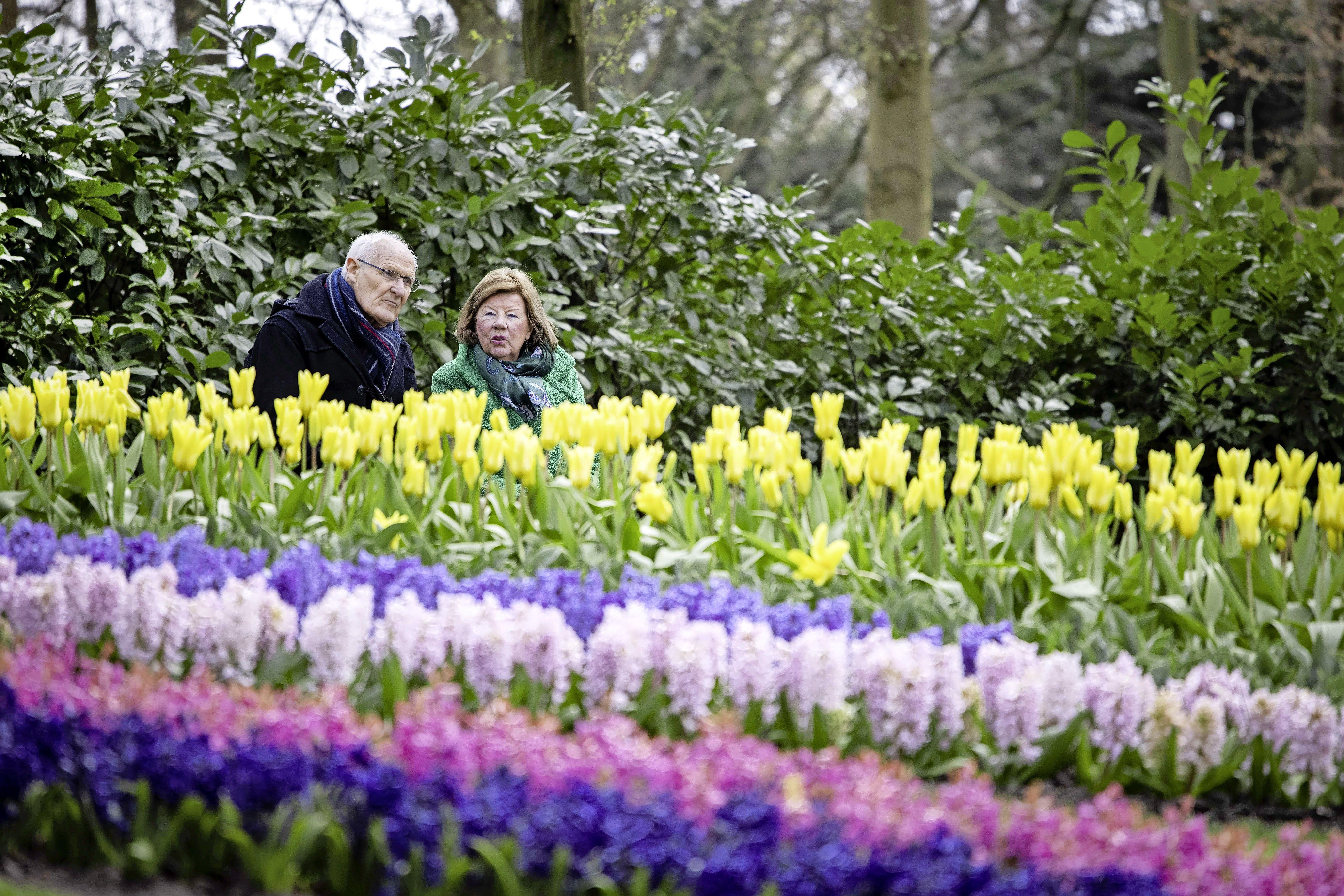 Directeur Bart Siemerink blij met oproep burgemeester Henri Lenferink om Keukenhof weer dagelijks open te stellen: 'Het is hier veel veiliger dan in een publiekspark'