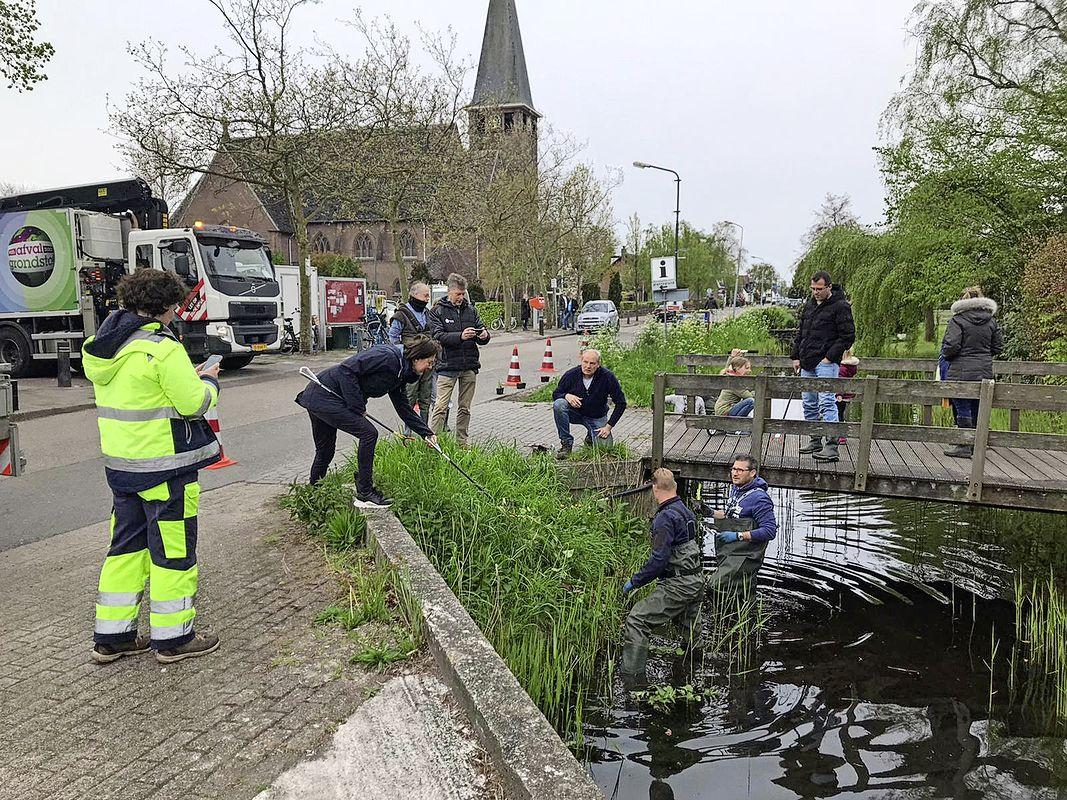Ankeveners willen natuurlijke oevers aanleggen, en meer: digitale Dorpsavond Ankeveen honoreert zeven plannen van dorpsbewoners