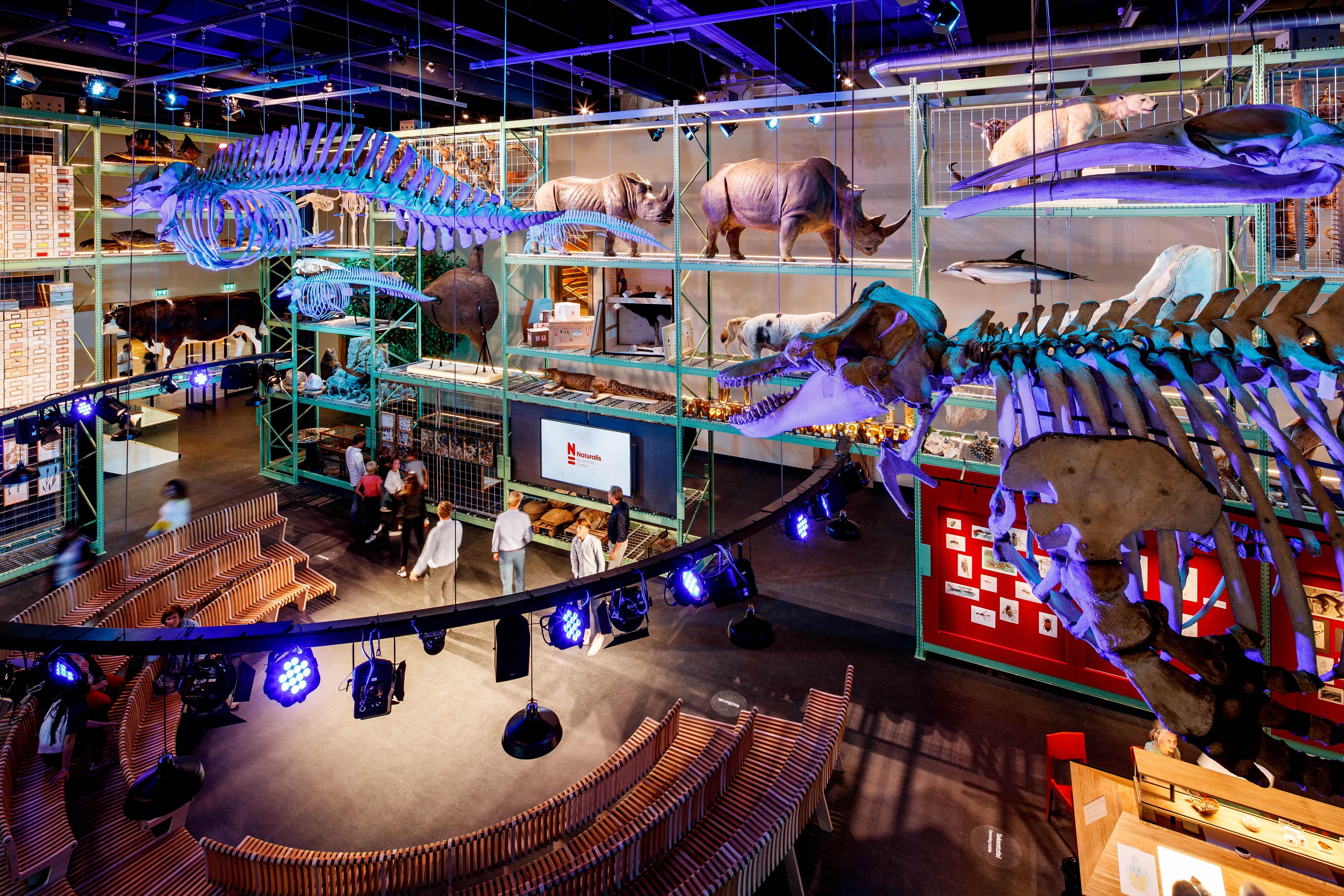 Naturalis genomineerd voor museumprijs en wil geld gebruiken voor de bouw van een professionele studio