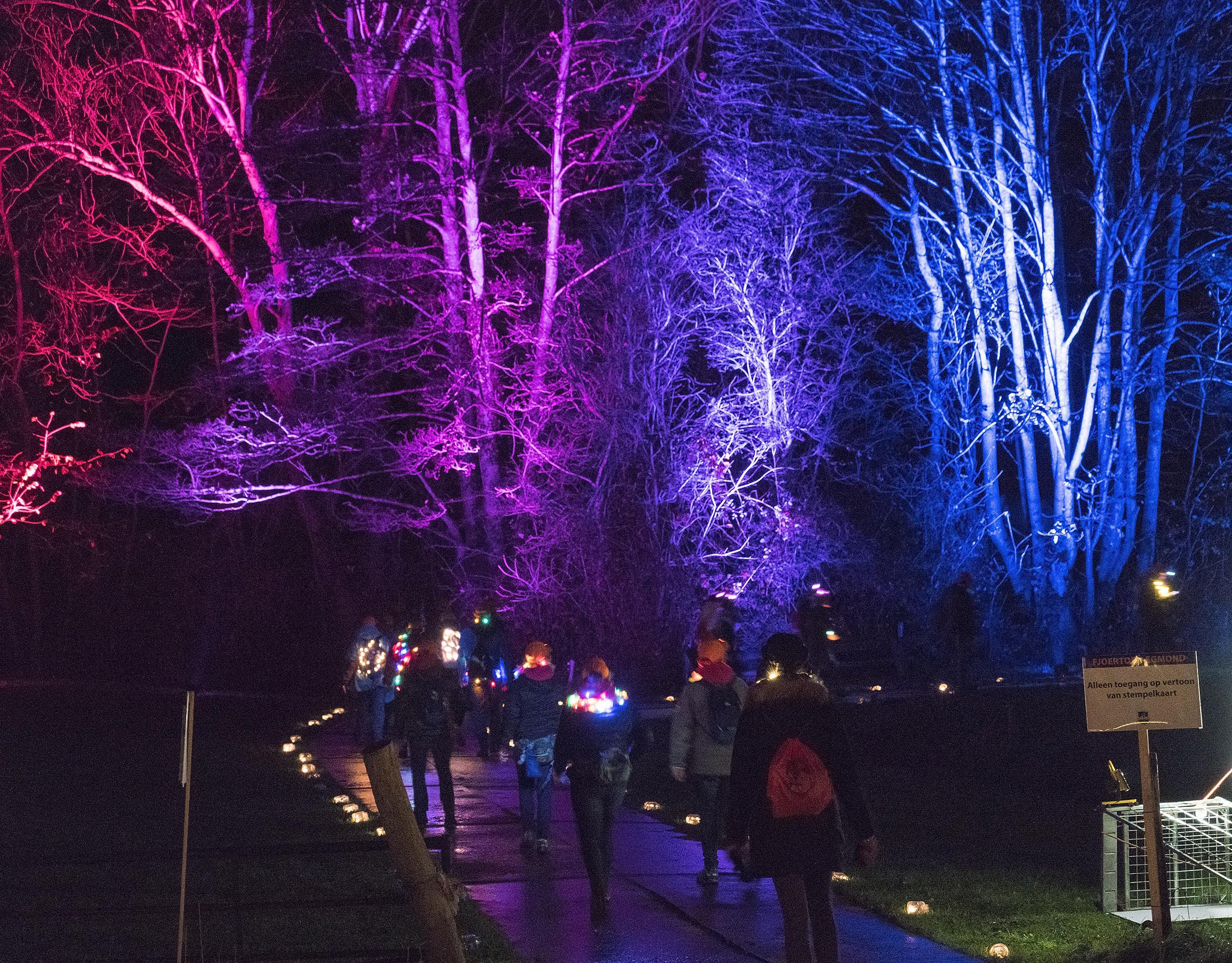 Video's, foto's: wandelen tussen de lichtjes tijdens Fjoertoer