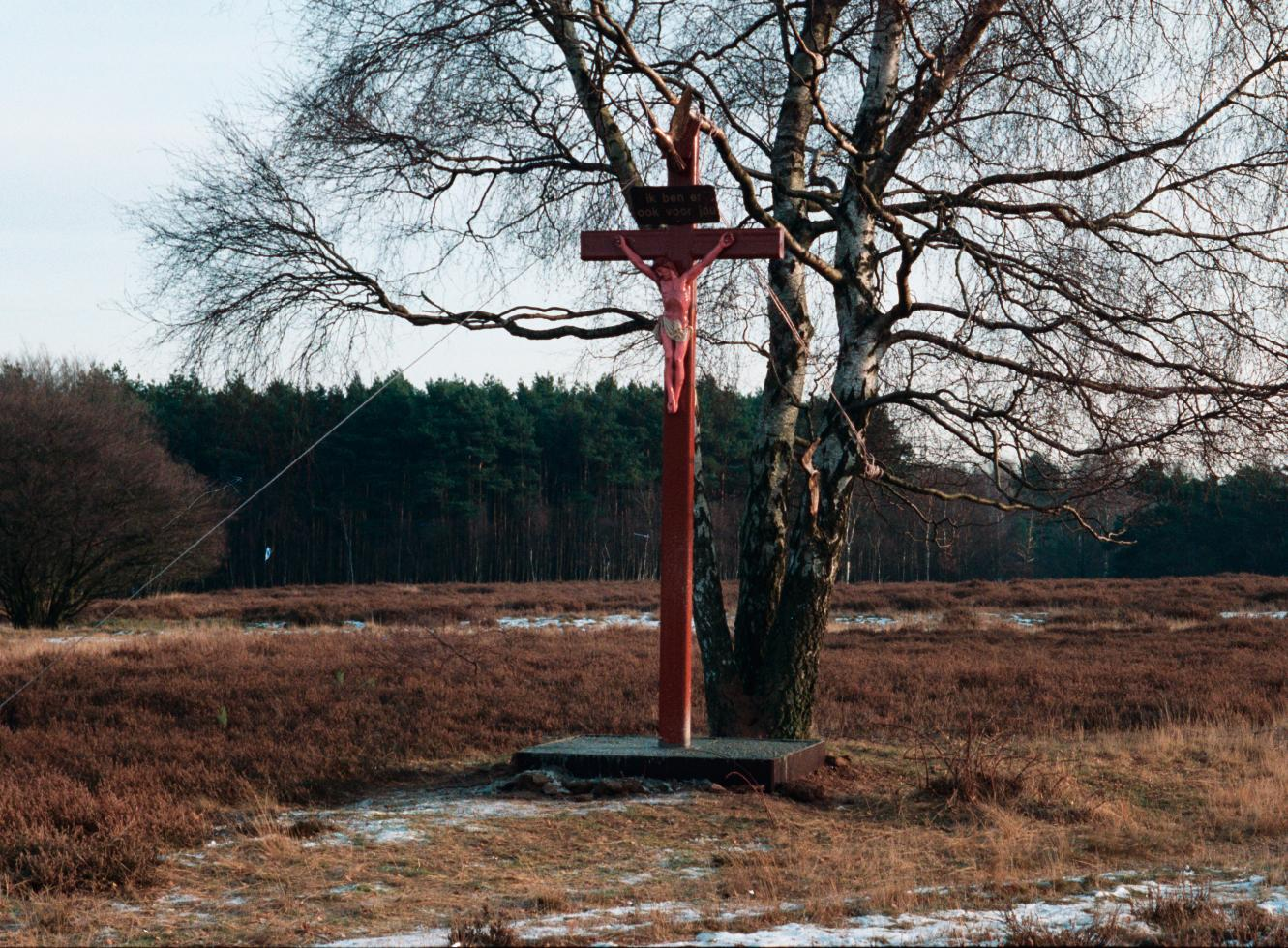 De Kijk van Kastermans: Mirakelse berk geneest paard