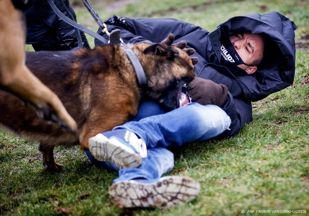 Dierenorganisaties willen inzet honden en paarden voorkomen
