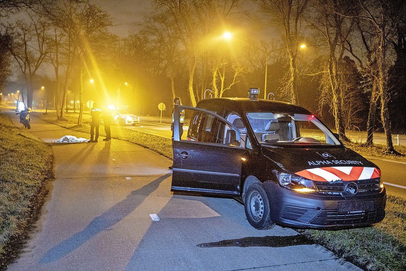 Hert overleden na aanrijding op Zeeweg in Overveen