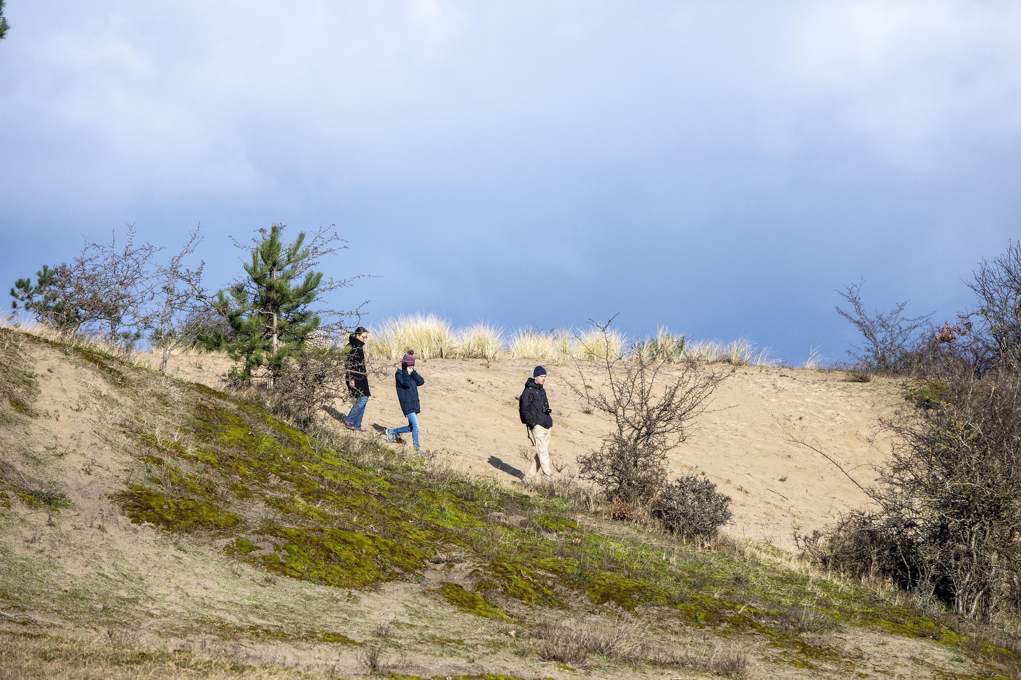 Stichting Duinbehoud bezorgd over naderend broedseizoen, nu veel bezoekers buiten de paden wandelen