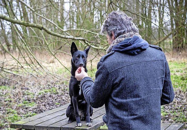 Kusjes geven. Spoiler alert! Wat honden zoal eten | Column In 60 seconden