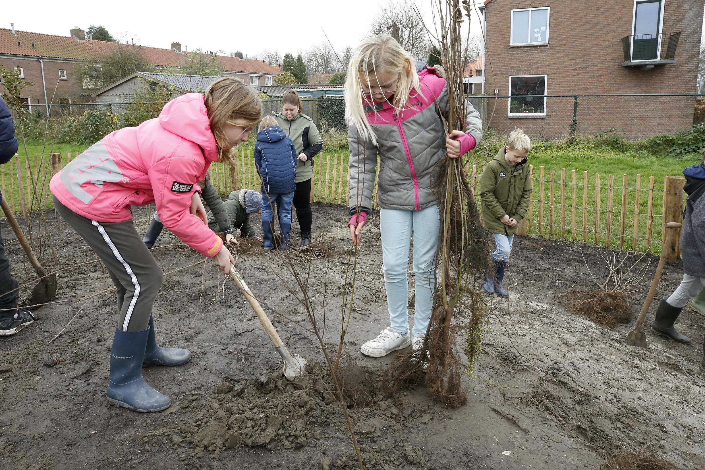 Wat anders dan een traditionele speelplek. Groep vijf en zes van de Brede School in Middenmeer planten met zeshonderd bomen hun eigen tiny forest 'Het Pienterbos'