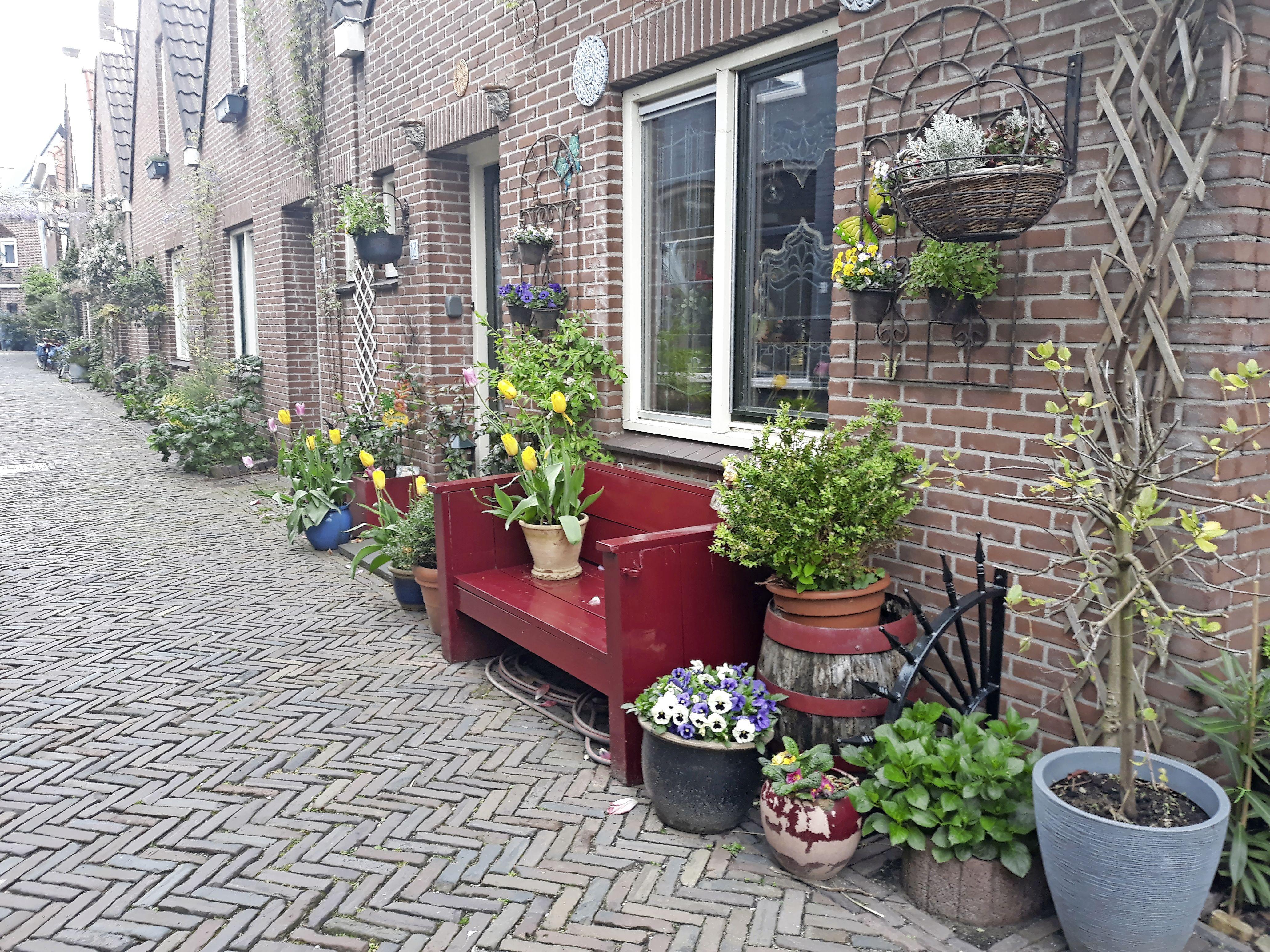 Slechte nachtrust door hitte, straat blank door clusterbuien. Negen van de tien inwoners in regio Alkmaar zijn bereid tot actie voor het klimaat