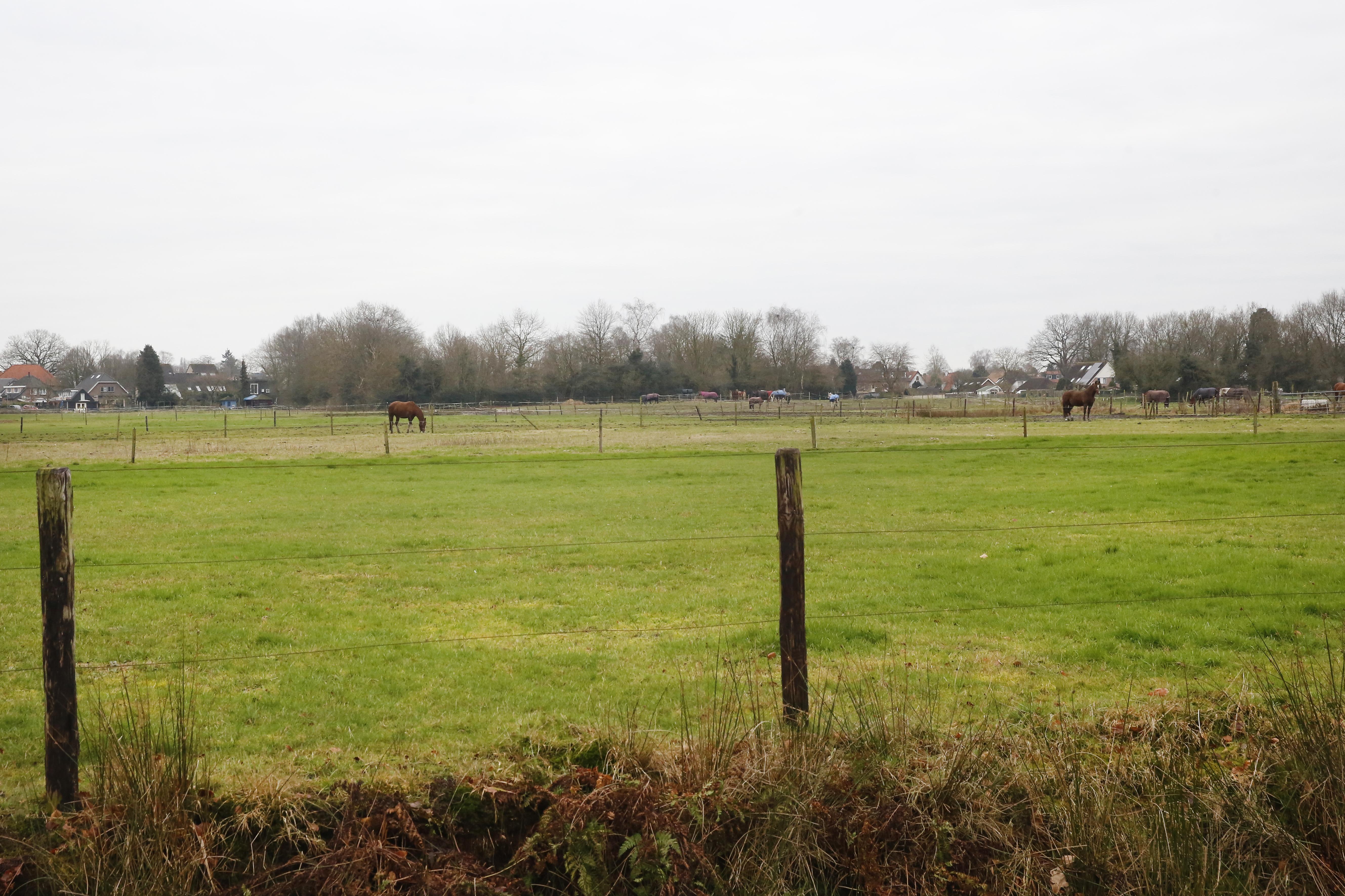 Soest laat oog vallen op grond van de prinsessen; claim op koninklijke landerijen vanwege mogelijke woningbouw aan de Koninginnelaan
