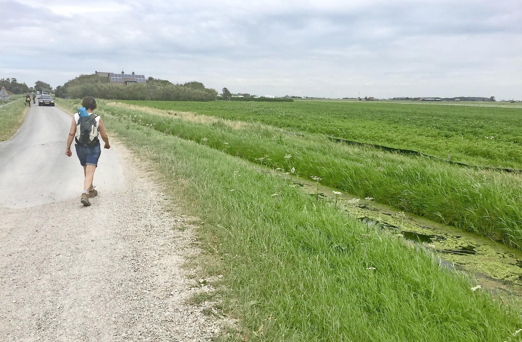 Landschap Noord-Holland mag van de kortgedingrechter de hekken van Botgat dicht houden voor de ecologen van bungalowparkbouwer