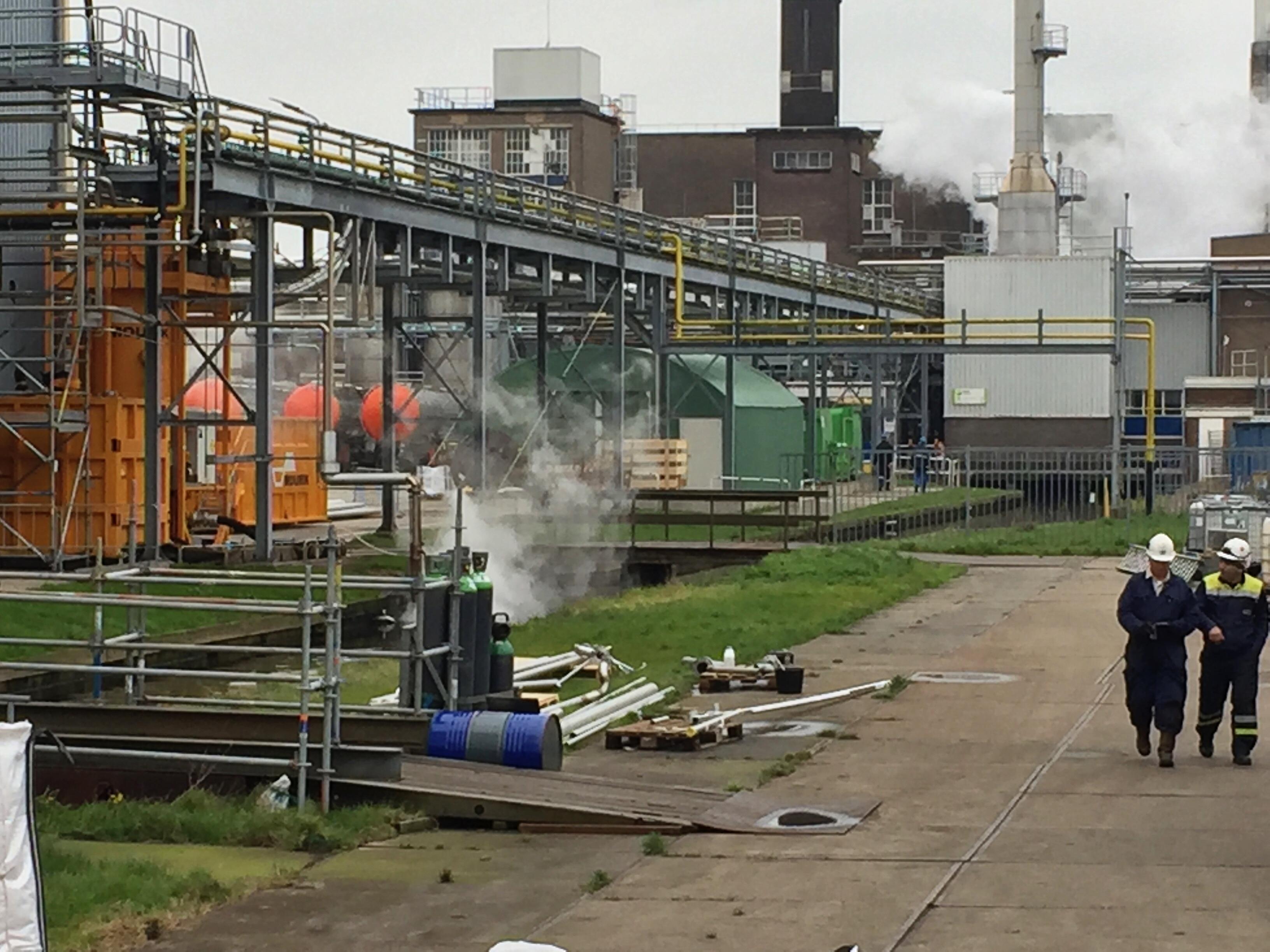 Cacaofabriek Olam in Koog aan de Zaan loost vetten in riool en daardoor stinkt het; Omgevingsdienst grijpt in