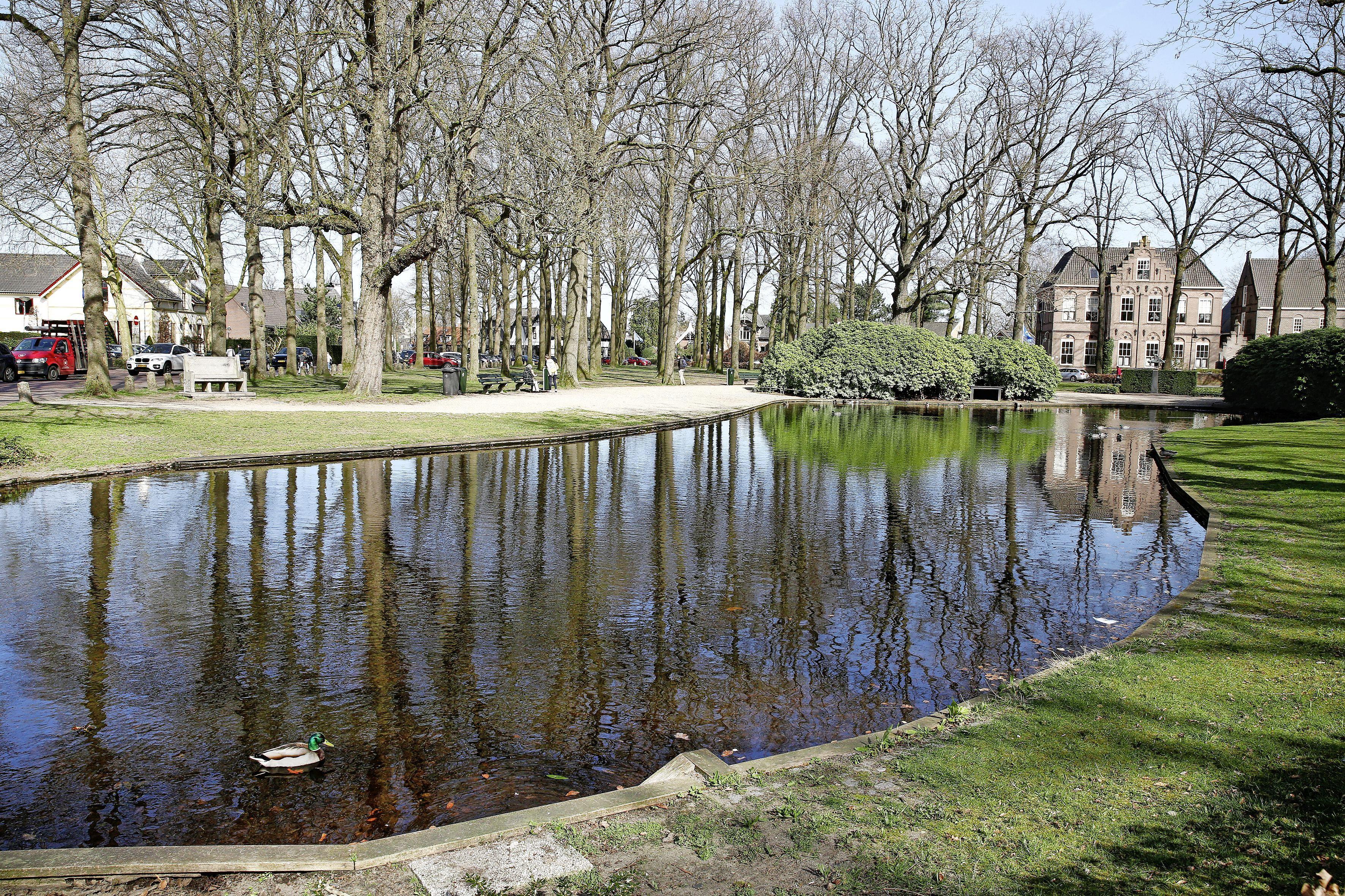 Nieuw Brinkplan Laren: Met waterberging onder Coeswaerde blijven de bomen gespaard. Verbetering bodem helpt het groen op de Brink