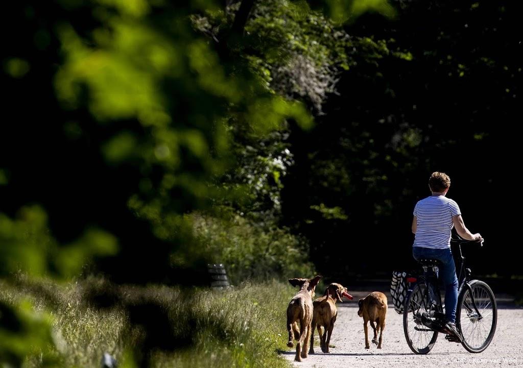 Kamer wil afschaffing hondenbelasting eerst nog onderzoeken