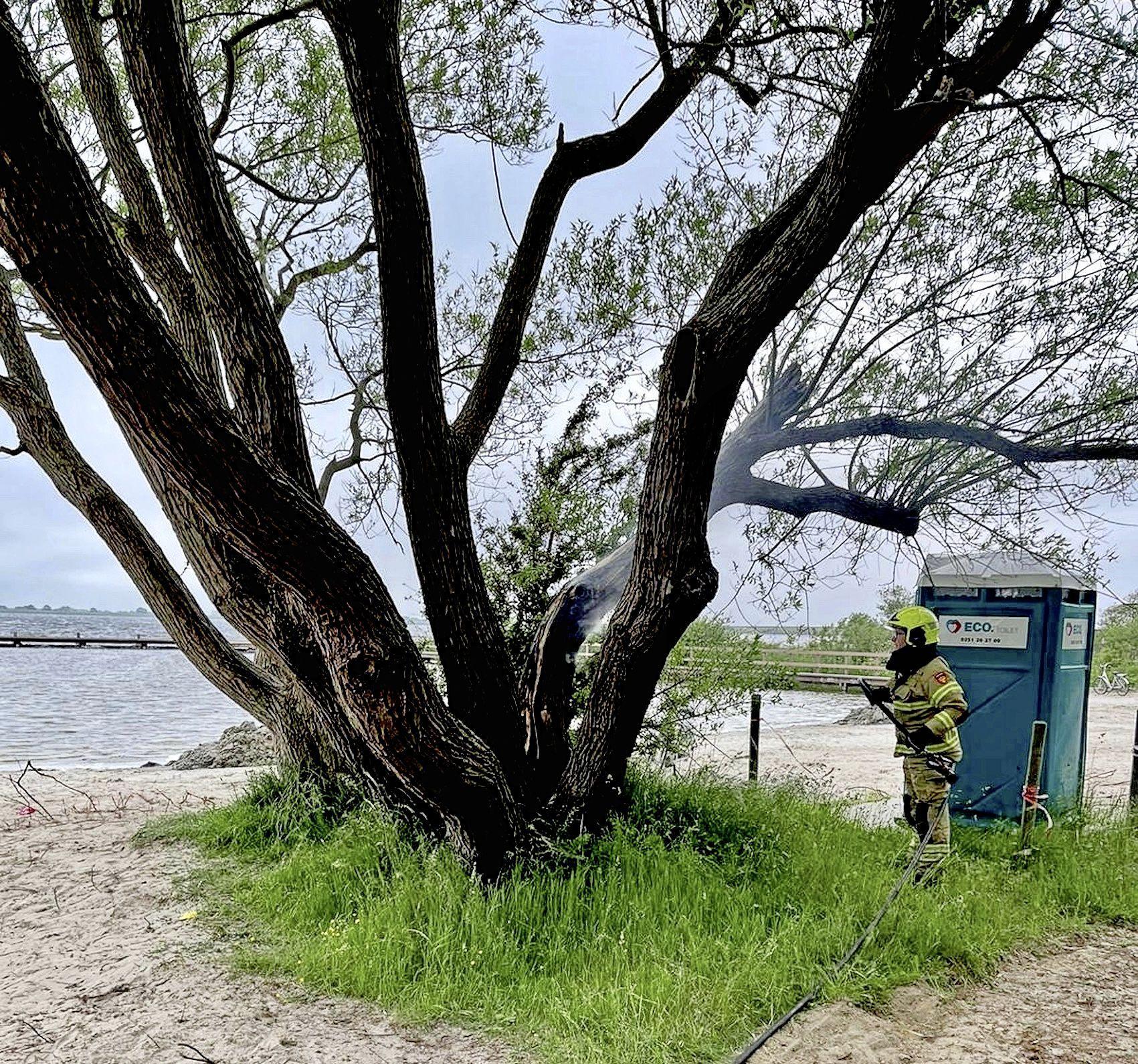 Dronken jeugd trapt wel vaker rotzooi bij Lutjestrand. 'Ouders, hou jullie pubers beter in de gaten', zeggen de uitbaters van de strandtent