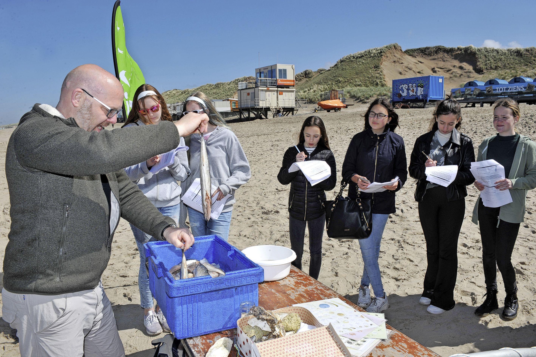 Leerlingen van het Kennemer College krijgen in de duin en op het strand biologie en aardrijkskunde: 'Dit is ons eerste uitje na corona'
