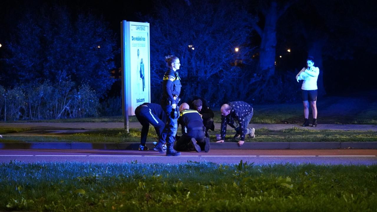 Hond zwaargewond bij aanrijding in Alkmaar: politiebus met zwaailicht naar de dierenarts