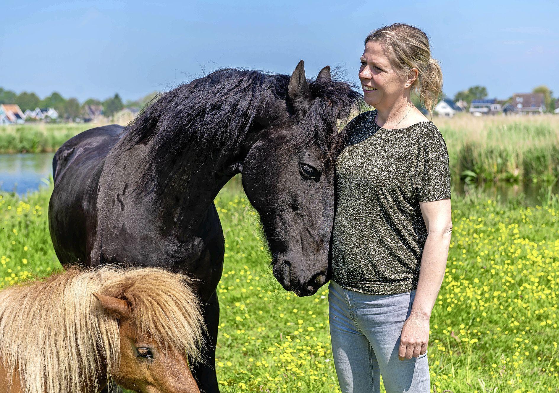 Paarden Wiebe, Caitlynn en Bassie helpen Ingrid van 't Hof om mensen te coachen: 'Een paard kan jouw onderbuikgevoel lezen'
