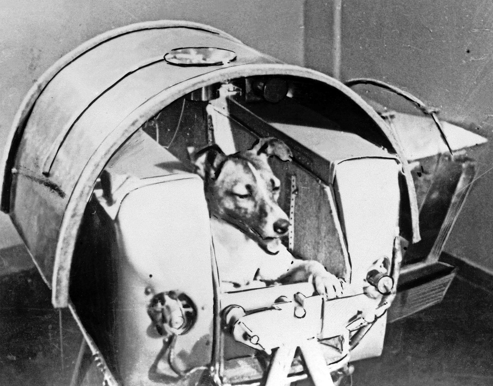 Zestig jaar mensen in de ruimte: 'We zien nu eigenlijk weer hetzelfde als toen, maar dan tussen de VS en China'