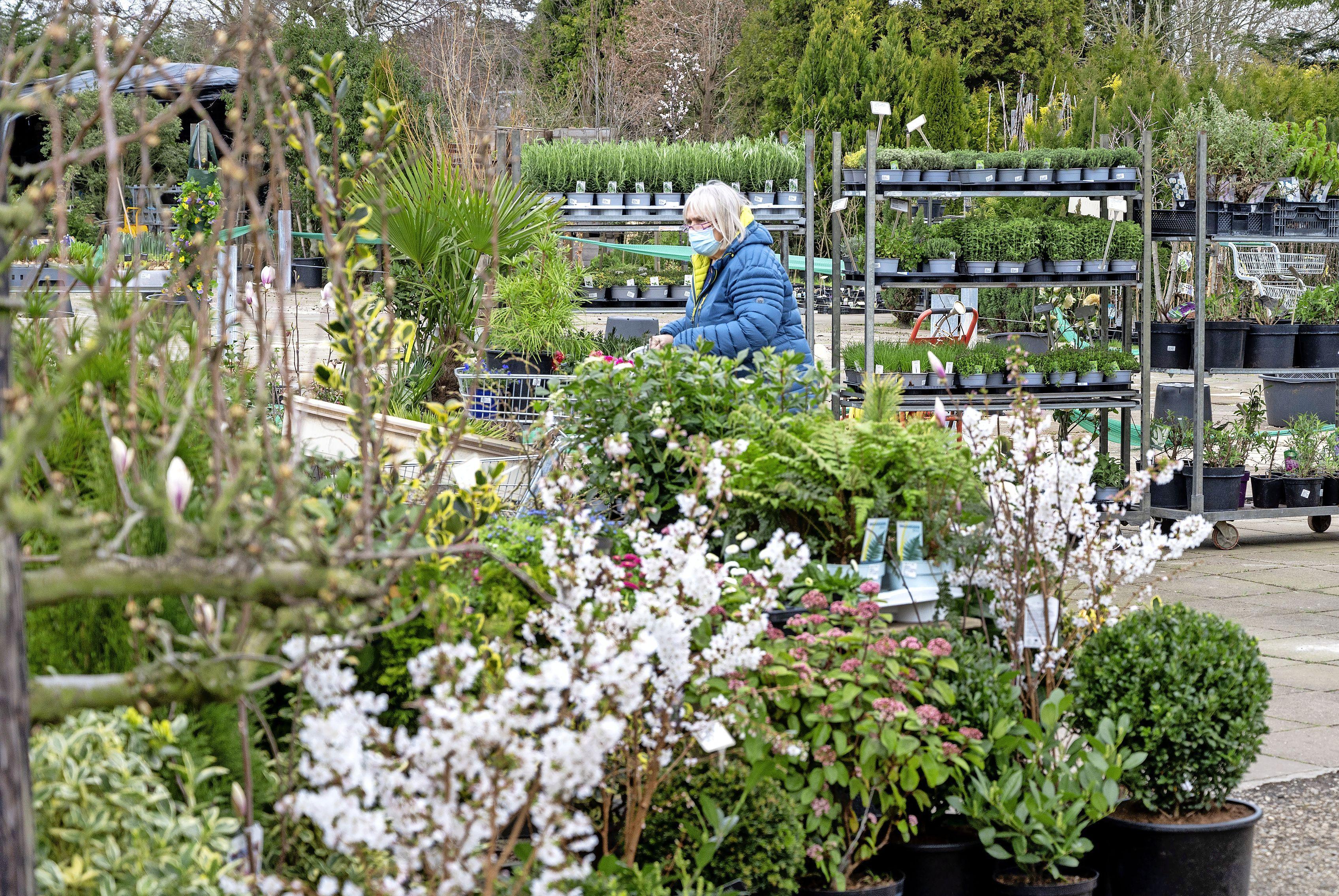 Tuinliefhebbers kopen de eerste plantjes. 'Henk heeft goede spullen, maar daarnaast gun ik hem ook een stukje omzet'