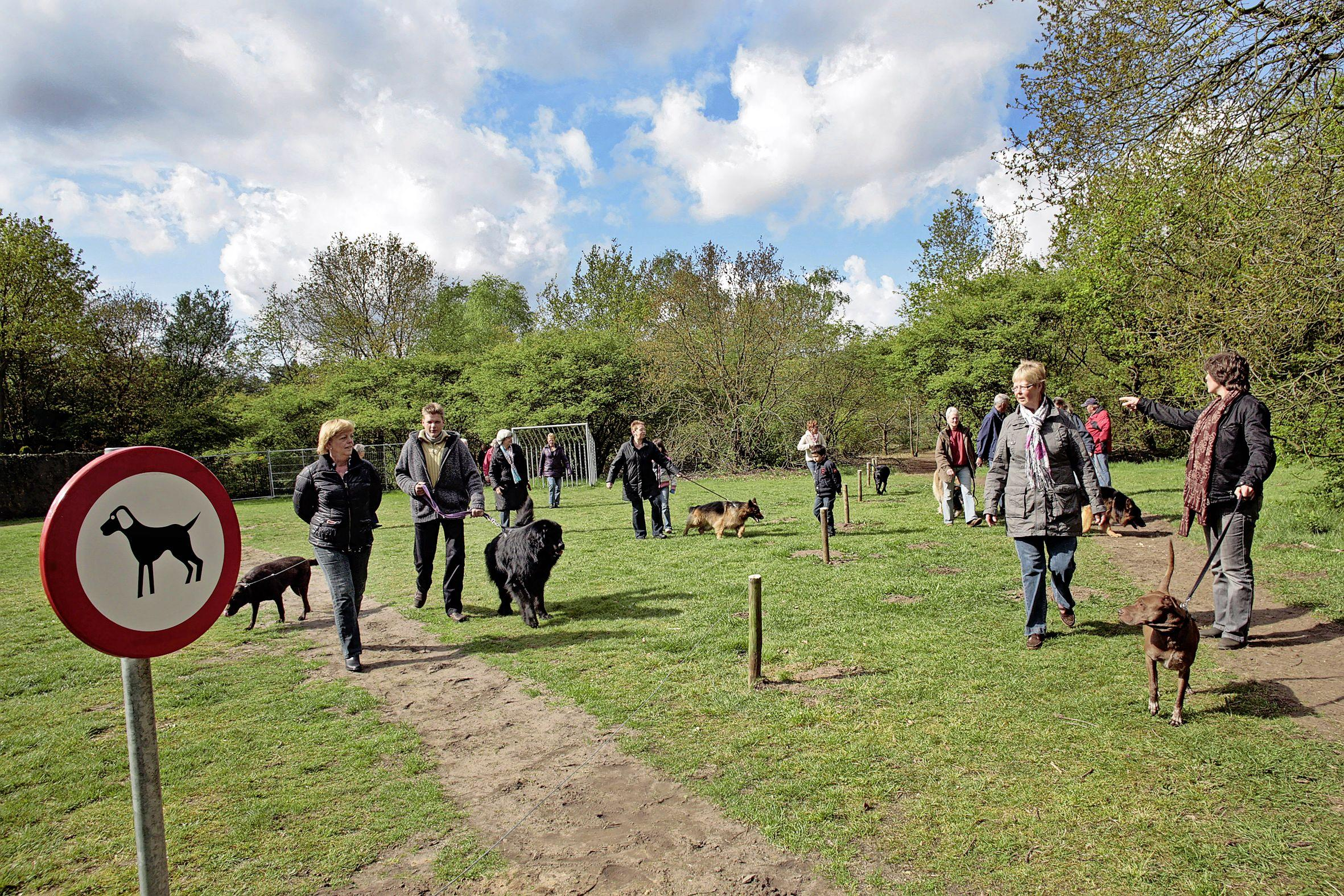 VVD Laren wil opheldering over hondenbelasting; 'Nu is het geen eerlijke belasting voor de inwoners. De een betaalt wel, de ander niet'