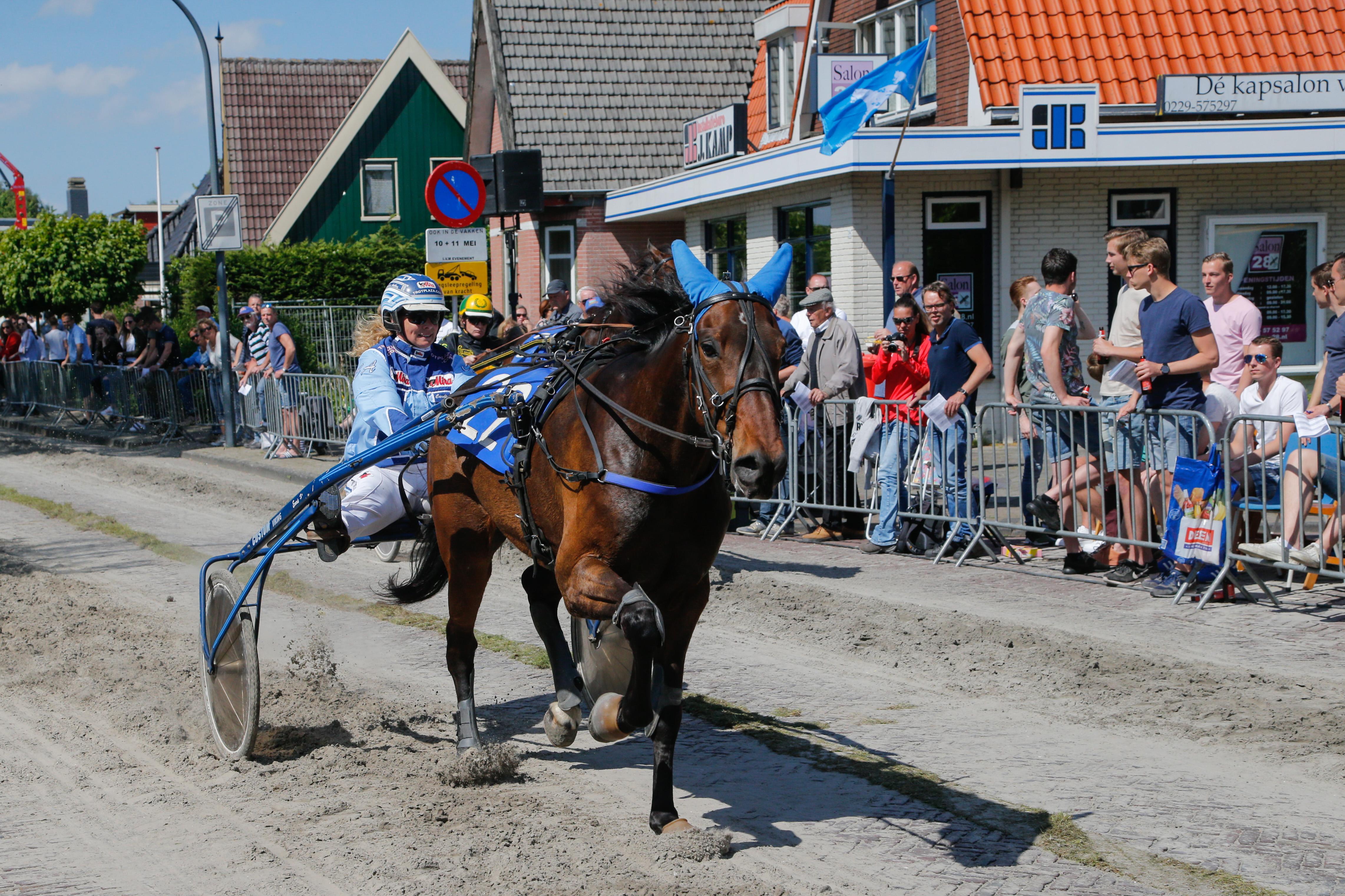 West-Friese draverijen dragen financieel bij aan NK Kortebaan op Duindigt: 'Als steun aan paardeneigenaren, trainers en rijders'