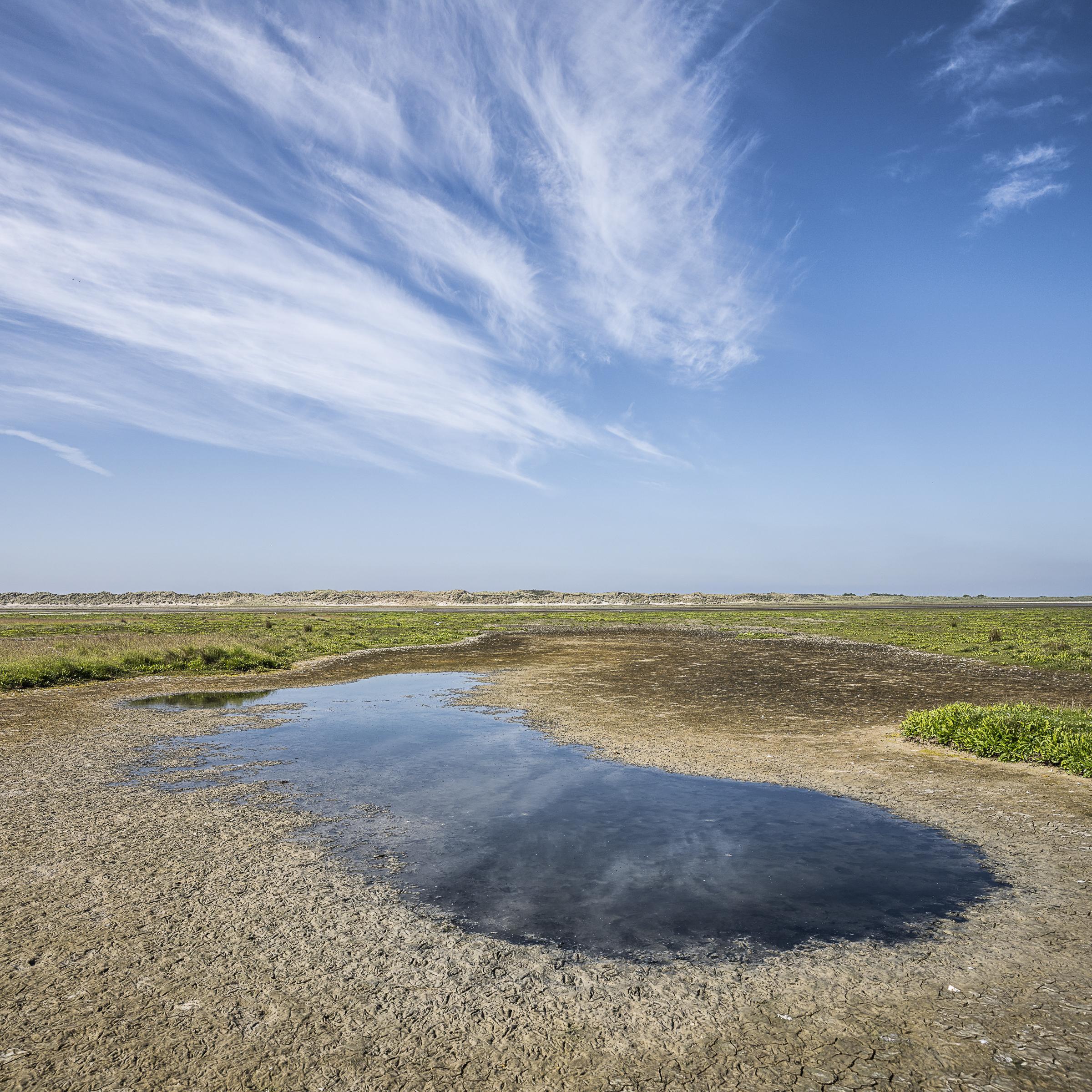 Een halve eeuw geleden verbleef eerst Bomans en daarna Wolkers op de Rottemerplaat. Vandaag: natuurmens met smikkelplank
