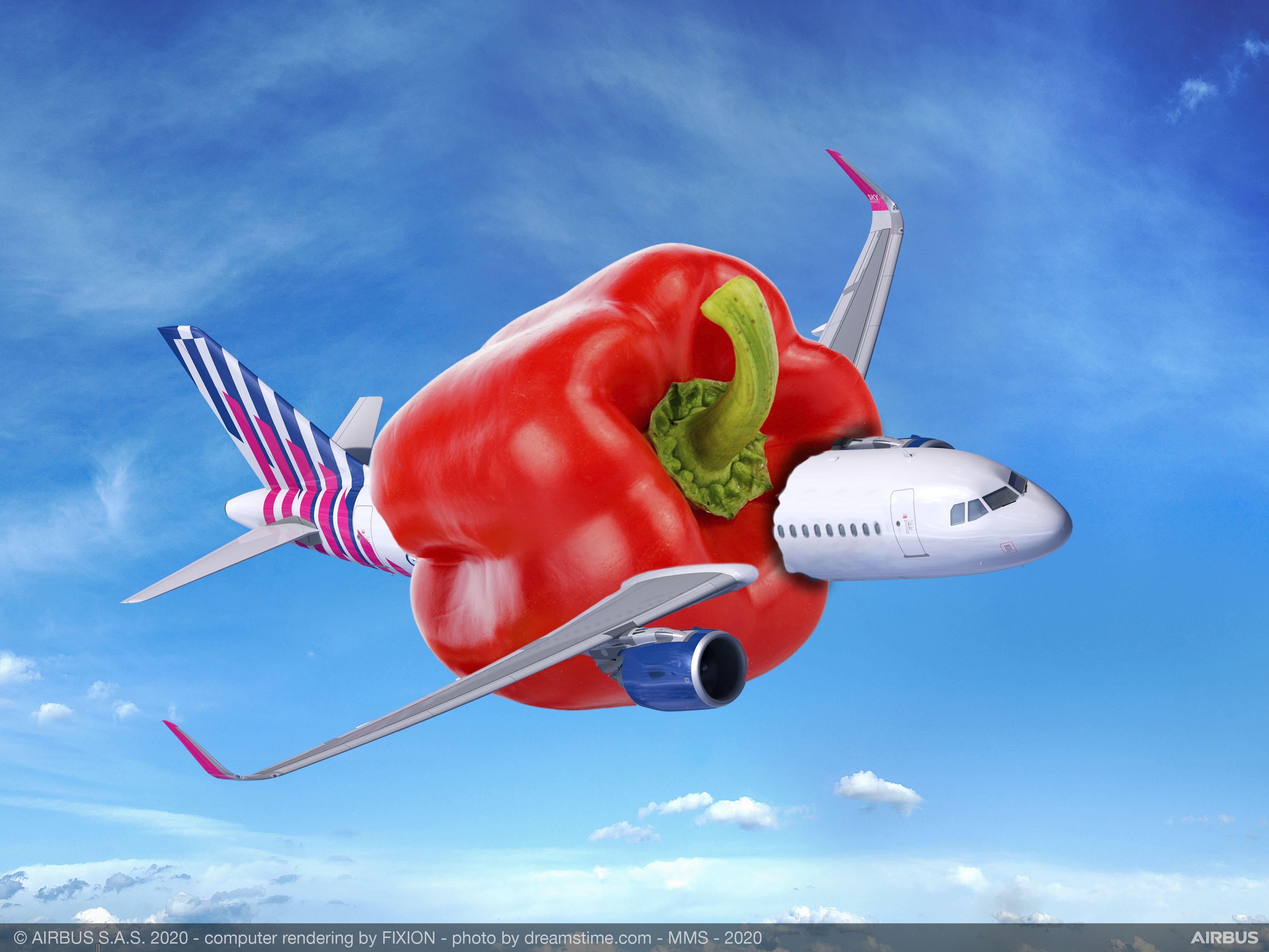 Wie durft in een 'paprikavliegtuig' te stappen? Onderzoek naar toepassing paprikaresten voor vliegtuigen: 'Het materiaal is brandwerend, licht en kan tegen een stootje'