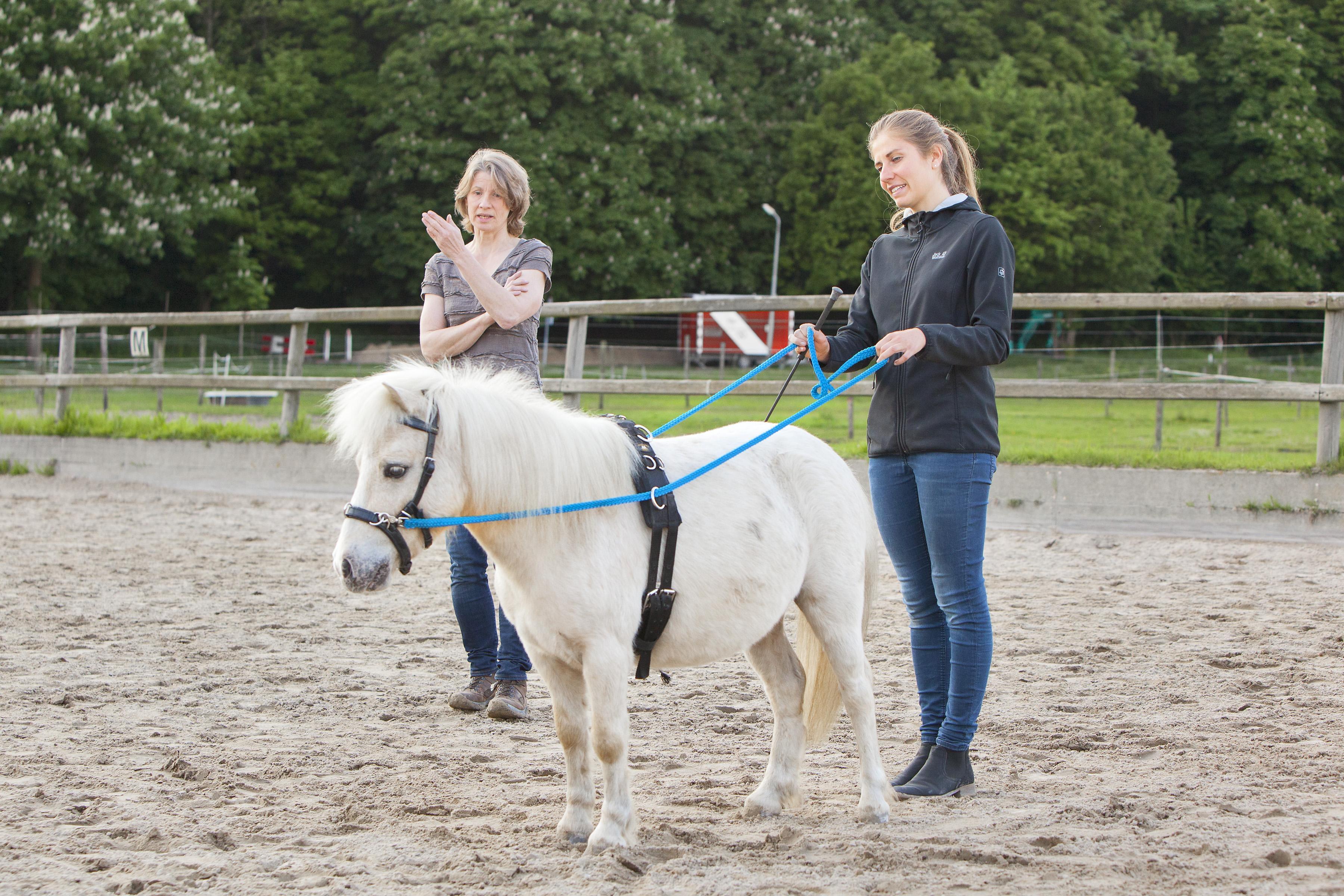 'Observeer je paard heel  goed, ruiters!'