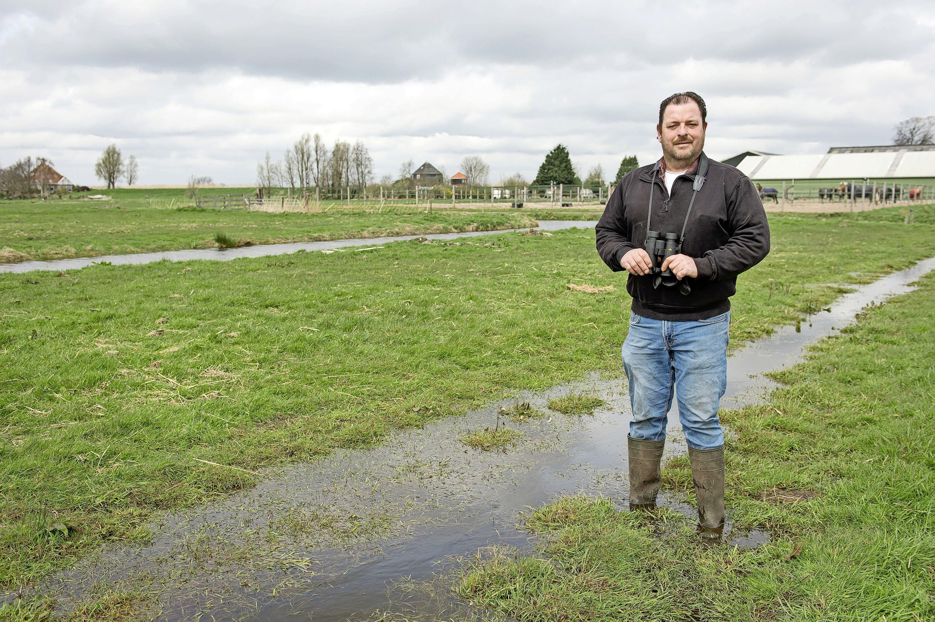 Alles draait om de pulletjes op deze weidevogelboerderij in Broek in Waterland: 'Meer water, minder bewerken, daar komt het op neer'