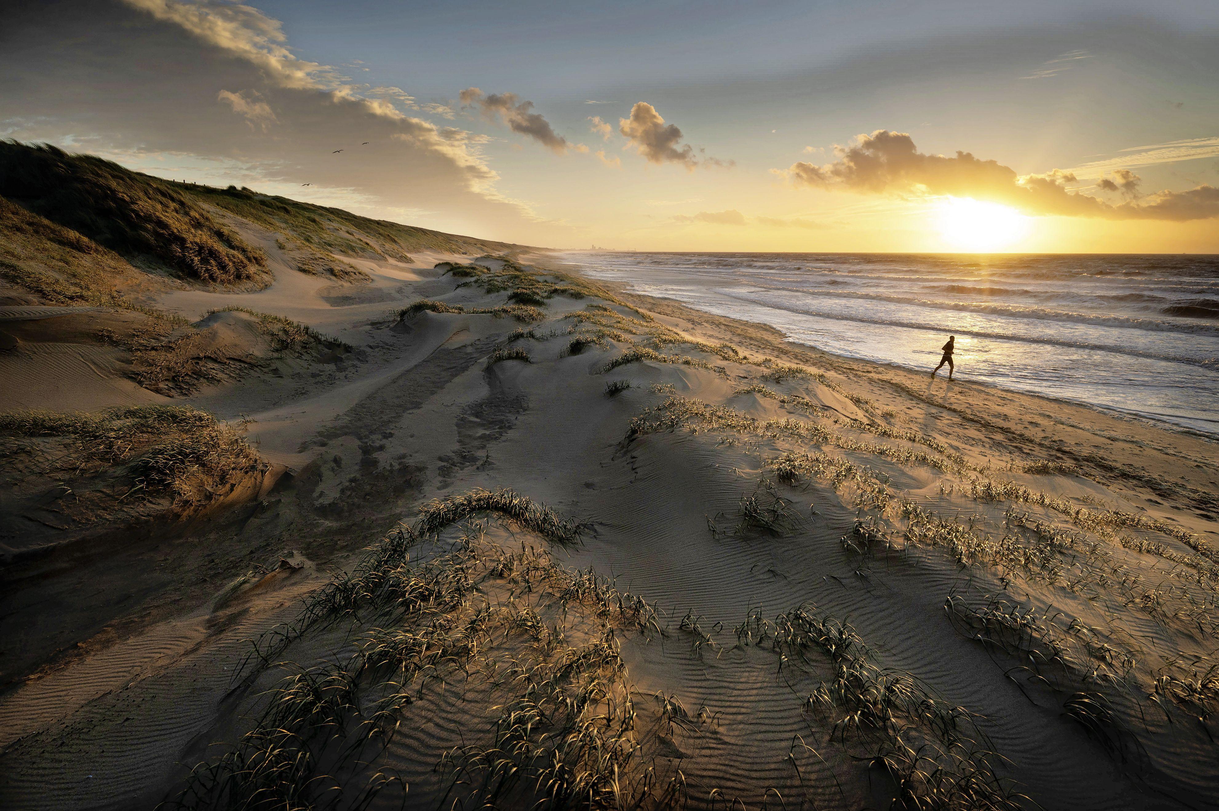 Duinbehoud adviseert om betere informatie te geven over de natuur op het strand