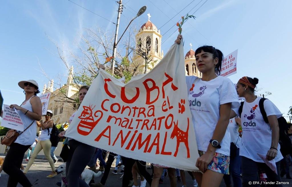 Cuba heeft zijn eerste dierenwelzijnswet